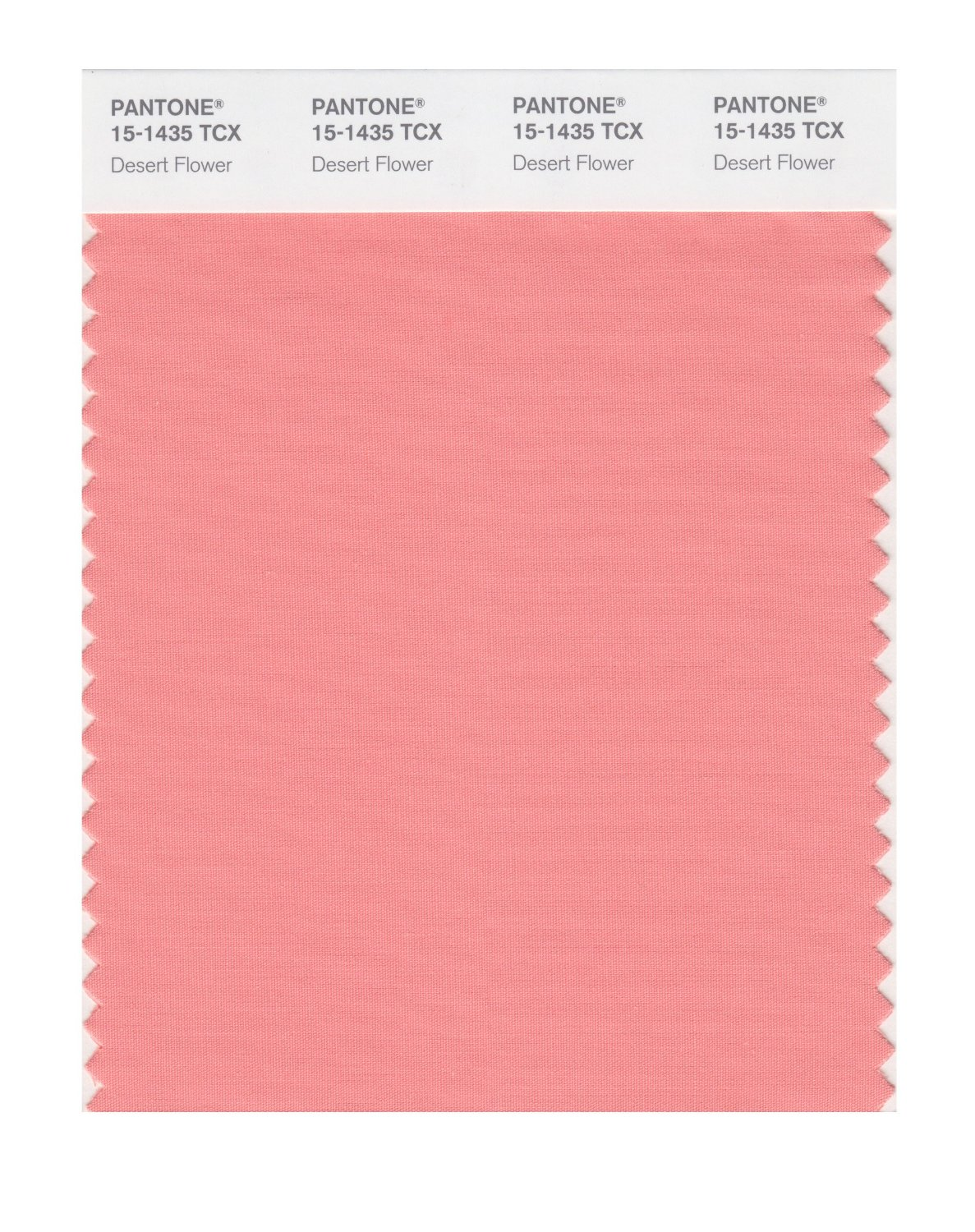 Pantone Smart Swatch 15-1435 Desert Flower