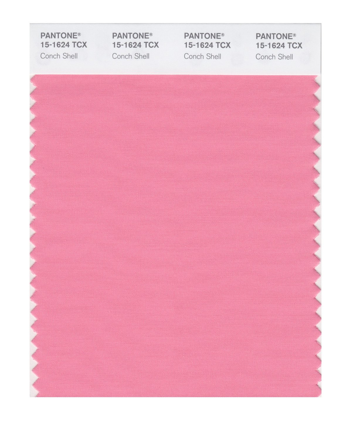 Pantone Smart Swatch 15-1624 Conch Shell