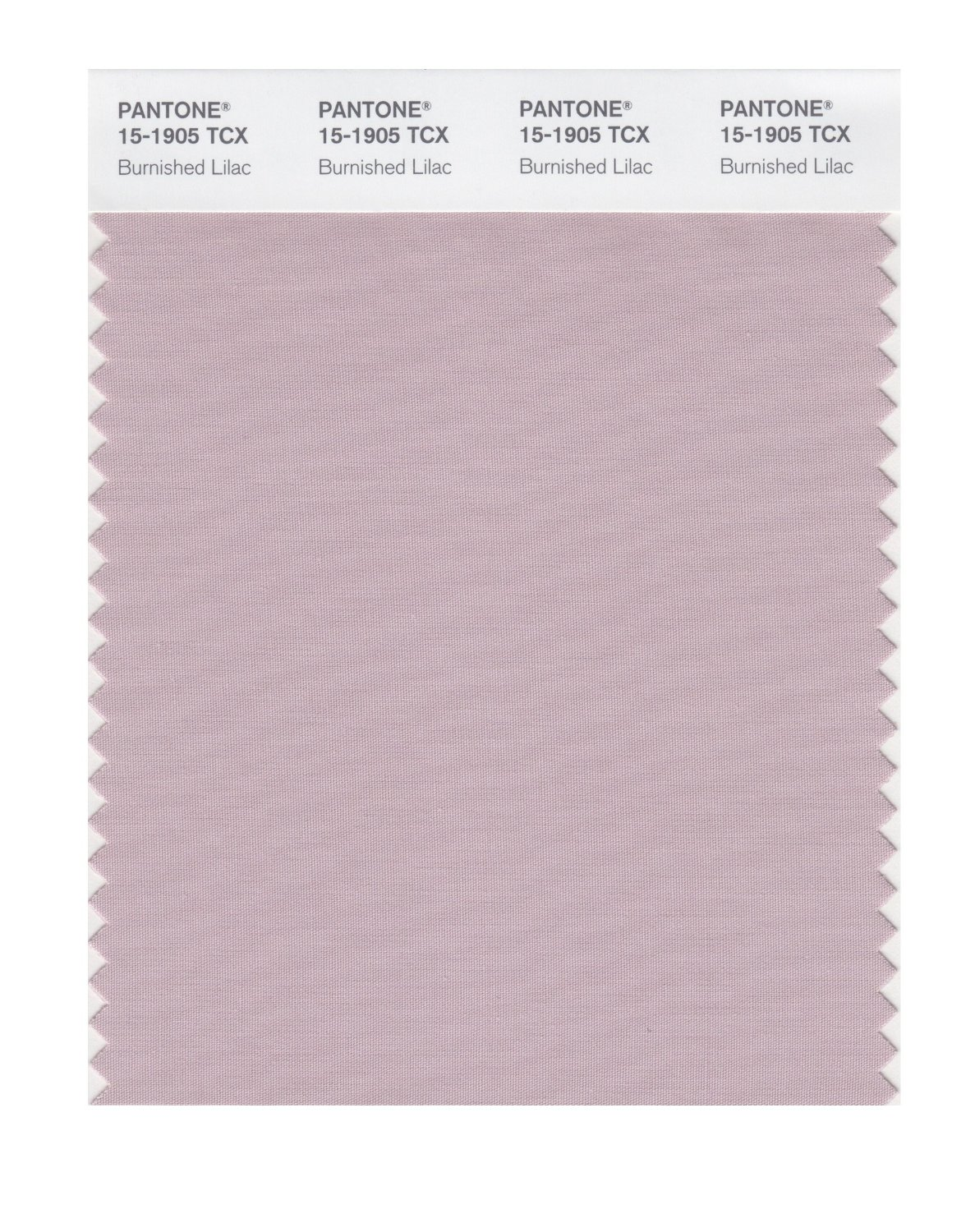Pantone Smart Swatch 15-1905 Burnished Lilac