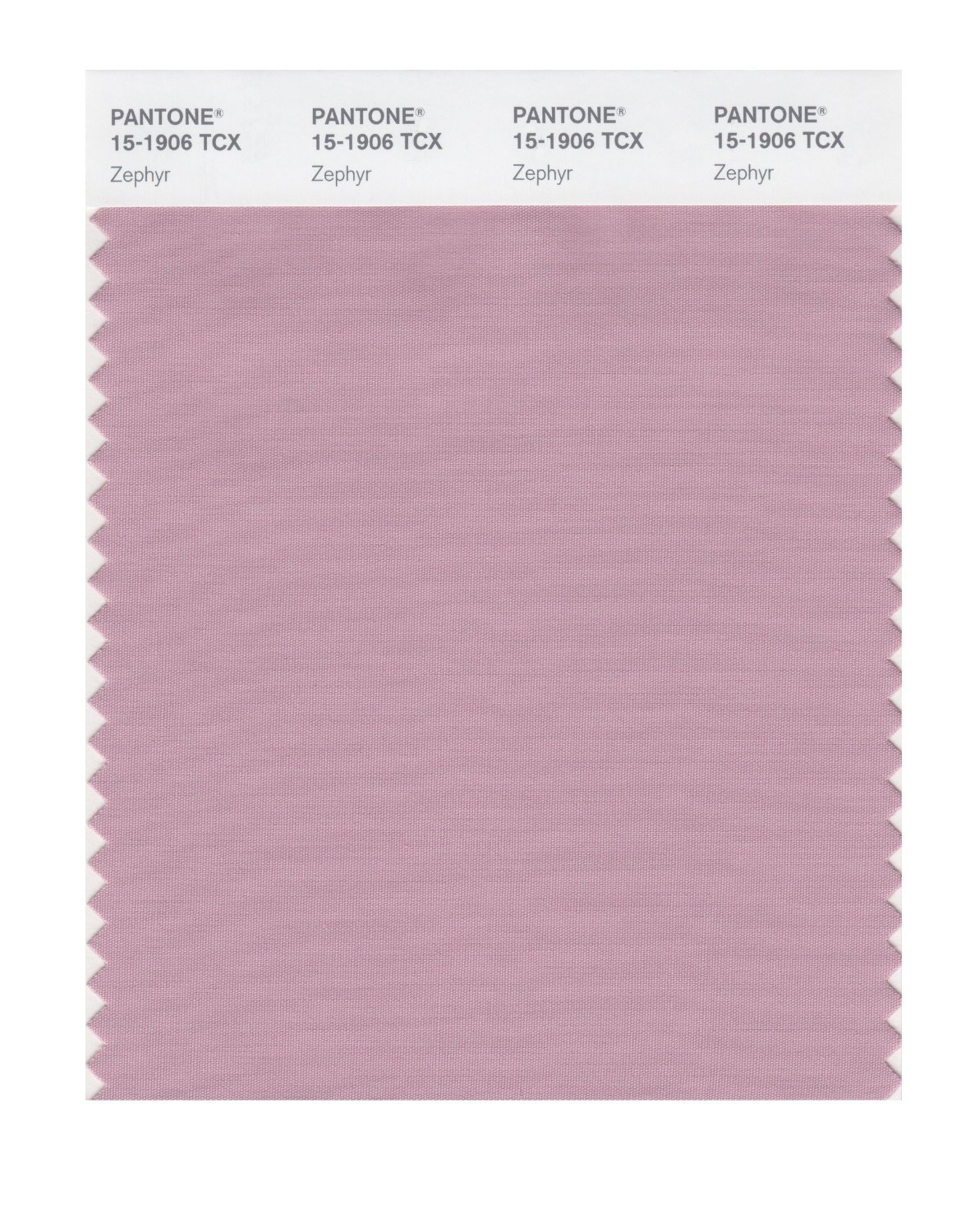 Pantone Smart Swatch 15-1906 Zephyr