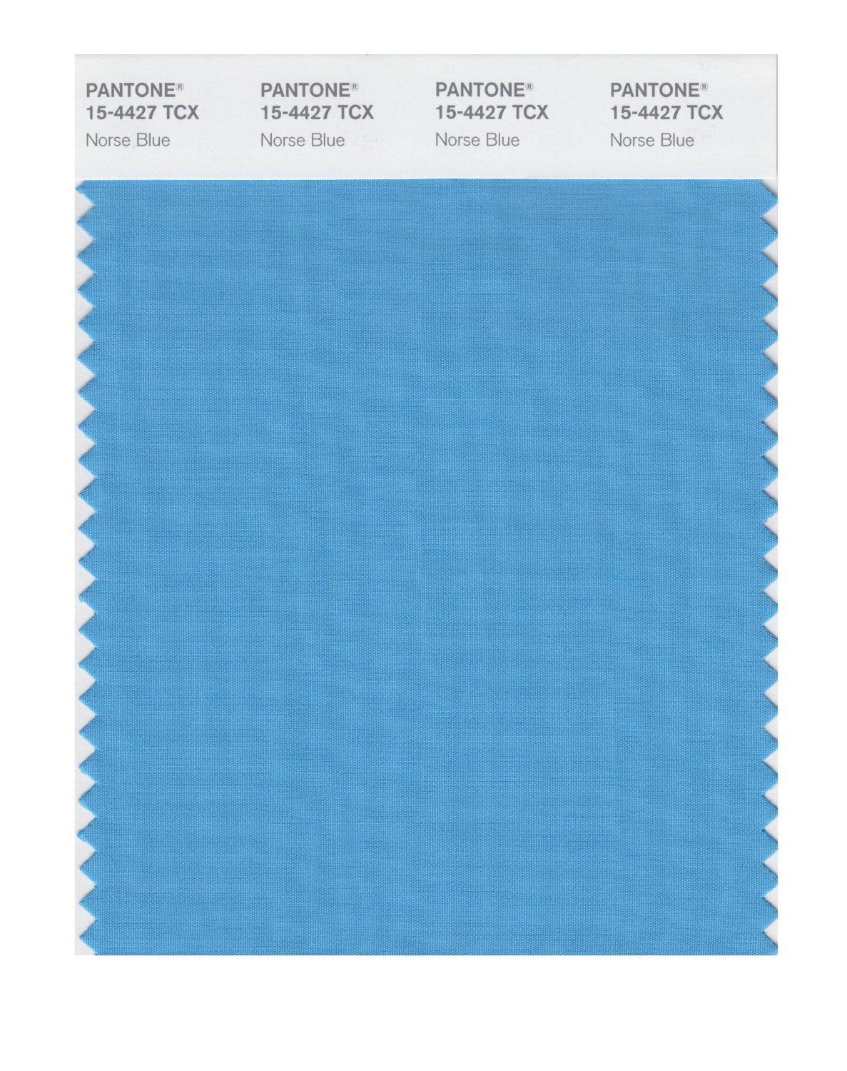 Pantone Smart Swatch 15-4427 Norse Blue