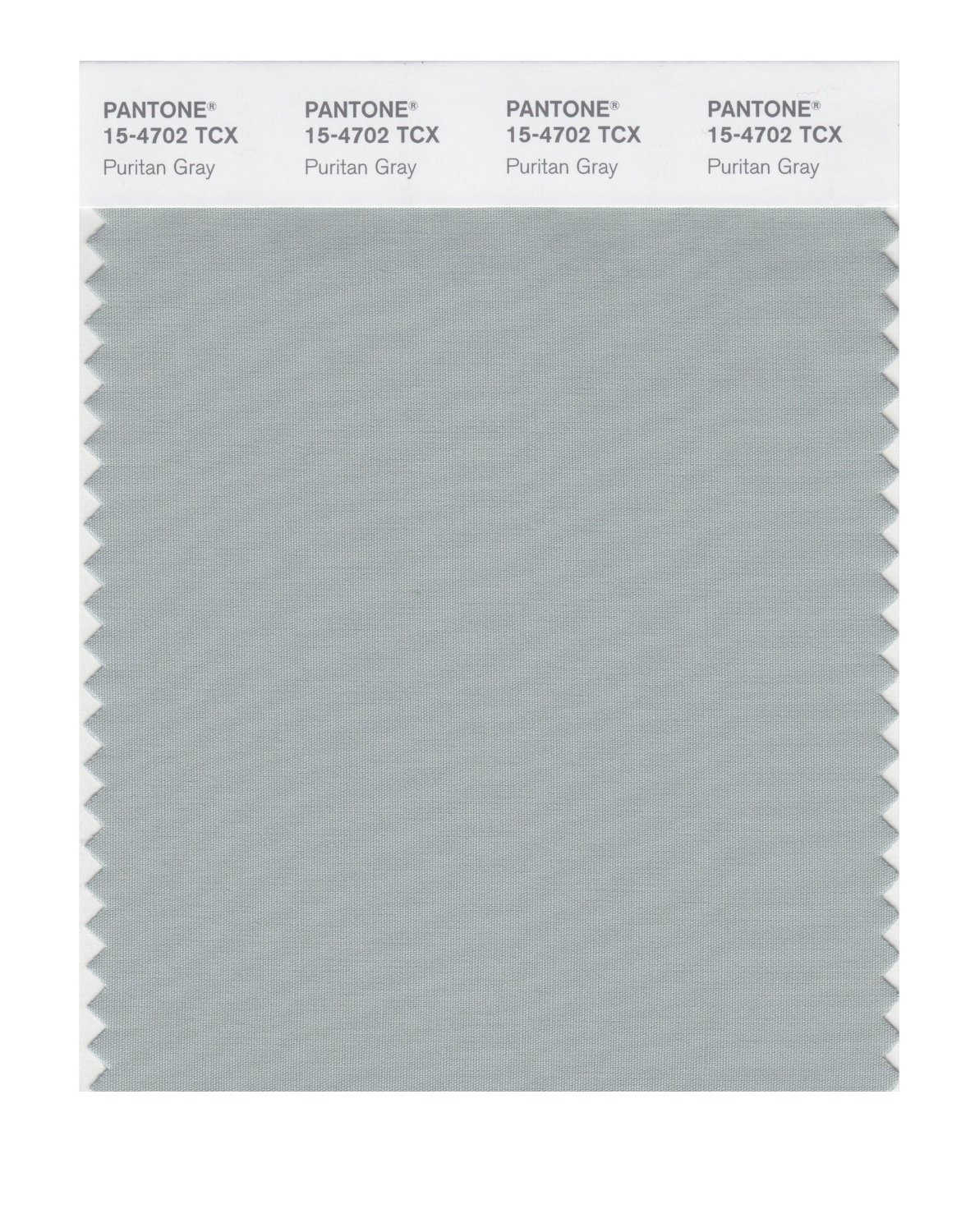 Pantone Smart Swatch 15-4702 Puritan Gray