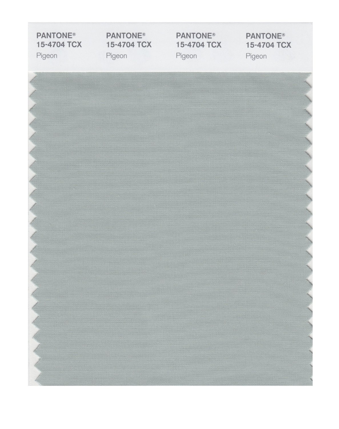 Pantone Smart Swatch 15-4704 Pigeon