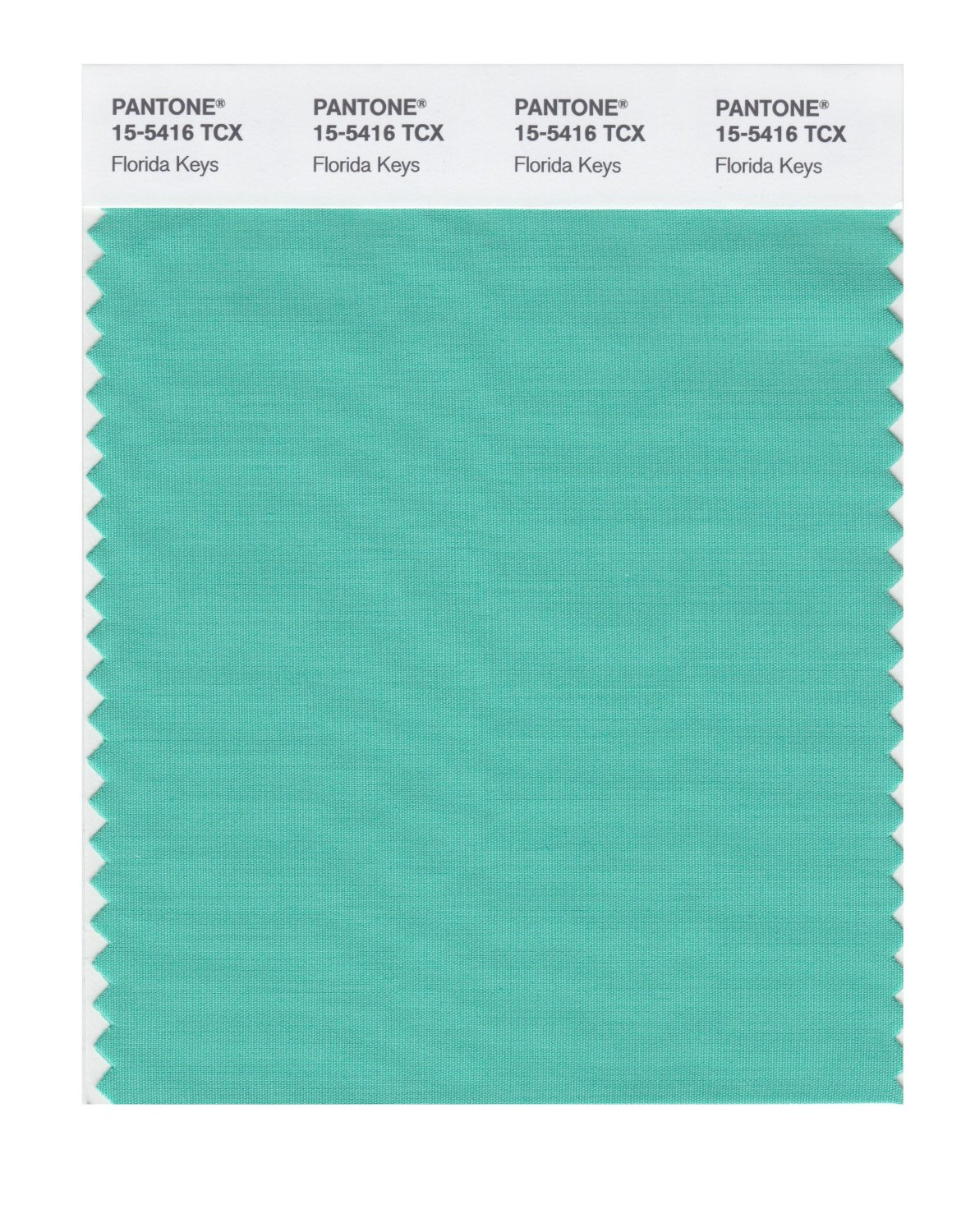 Pantone Smart Swatch 15-5416 Florida Keys