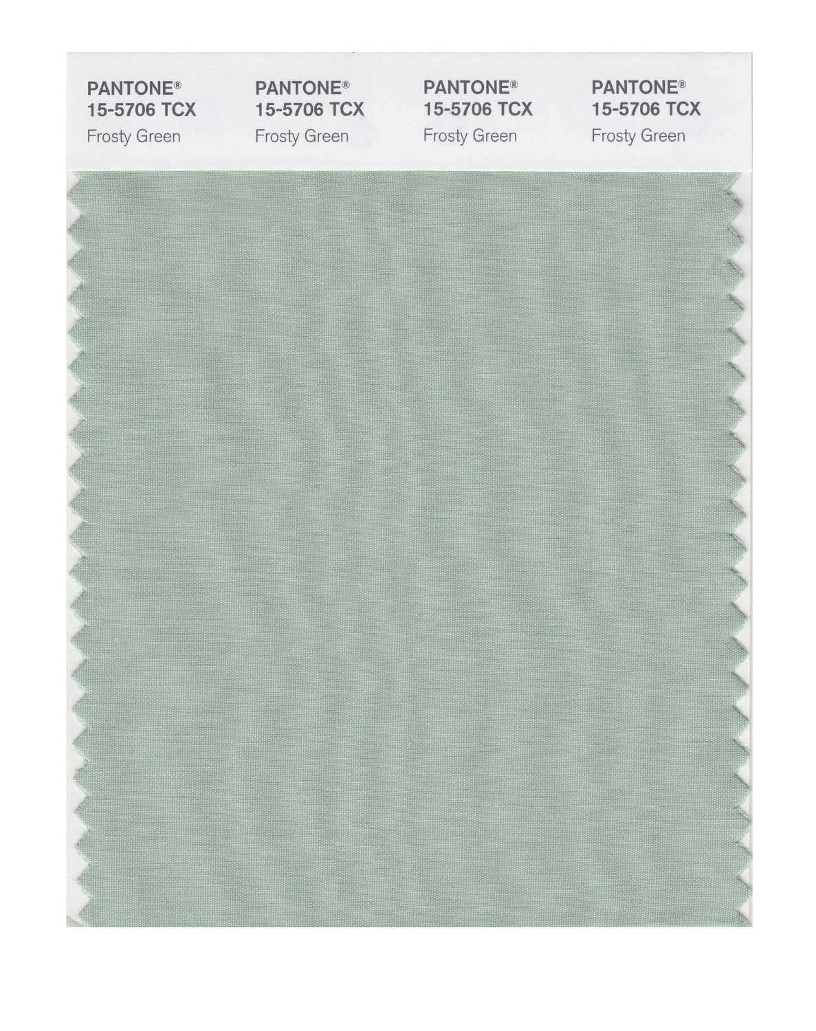 Pantone Smart Swatch 15-5706 Frosty Green