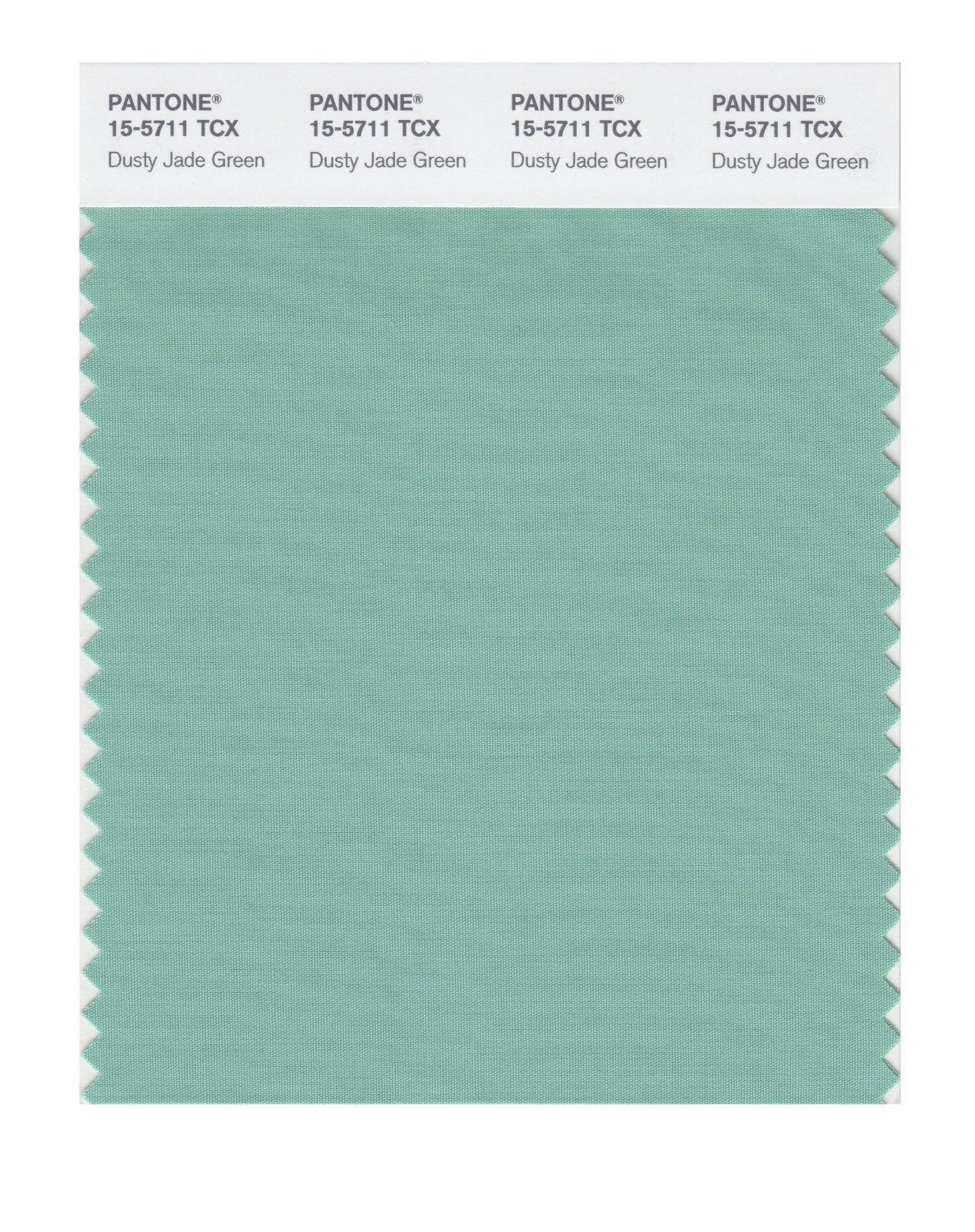 Pantone Smart Swatch 15-5711 Dusty Jade Green