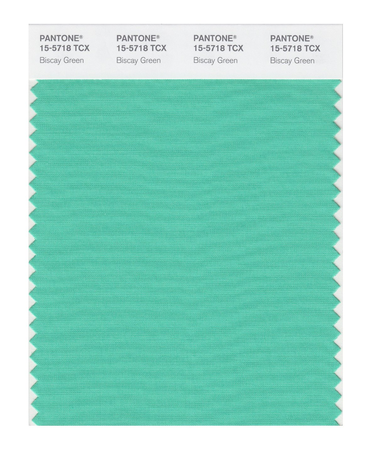Pantone Smart Swatch 15-5718 Biscay Green