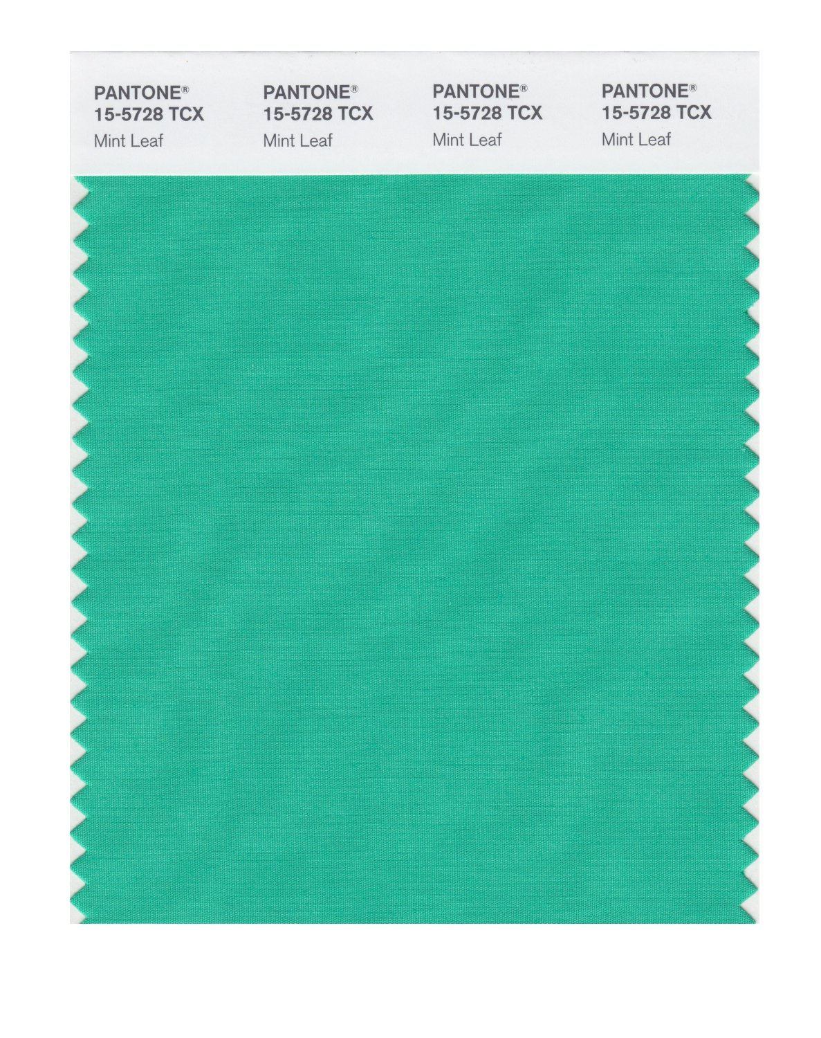 Pantone Smart Swatch 15-5728 Mint Leaf