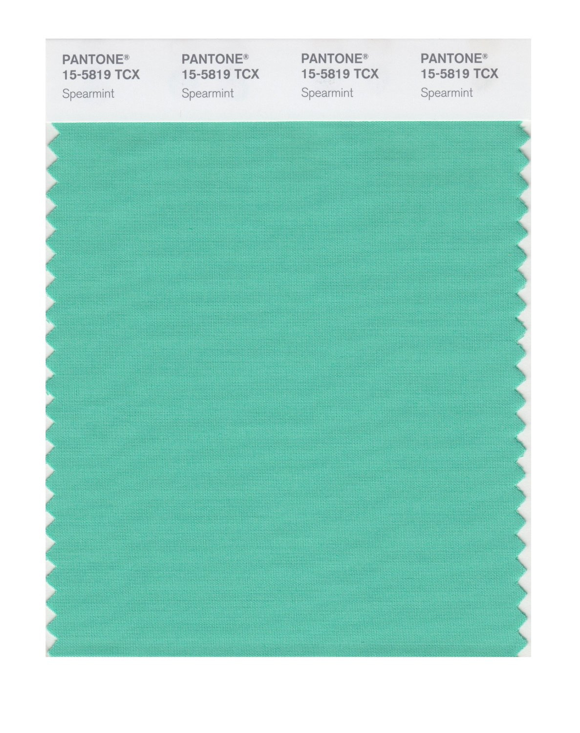 Pantone Smart Swatch 15-5819 Spearmint