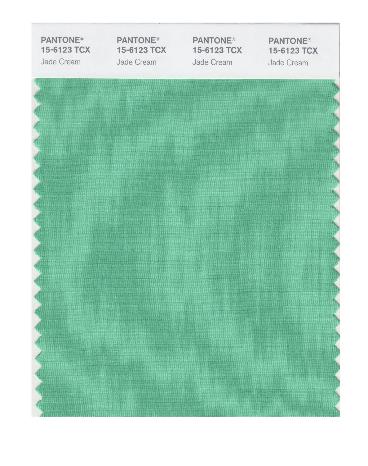 Pantone Smart Swatch 15-6123 Jade Cream