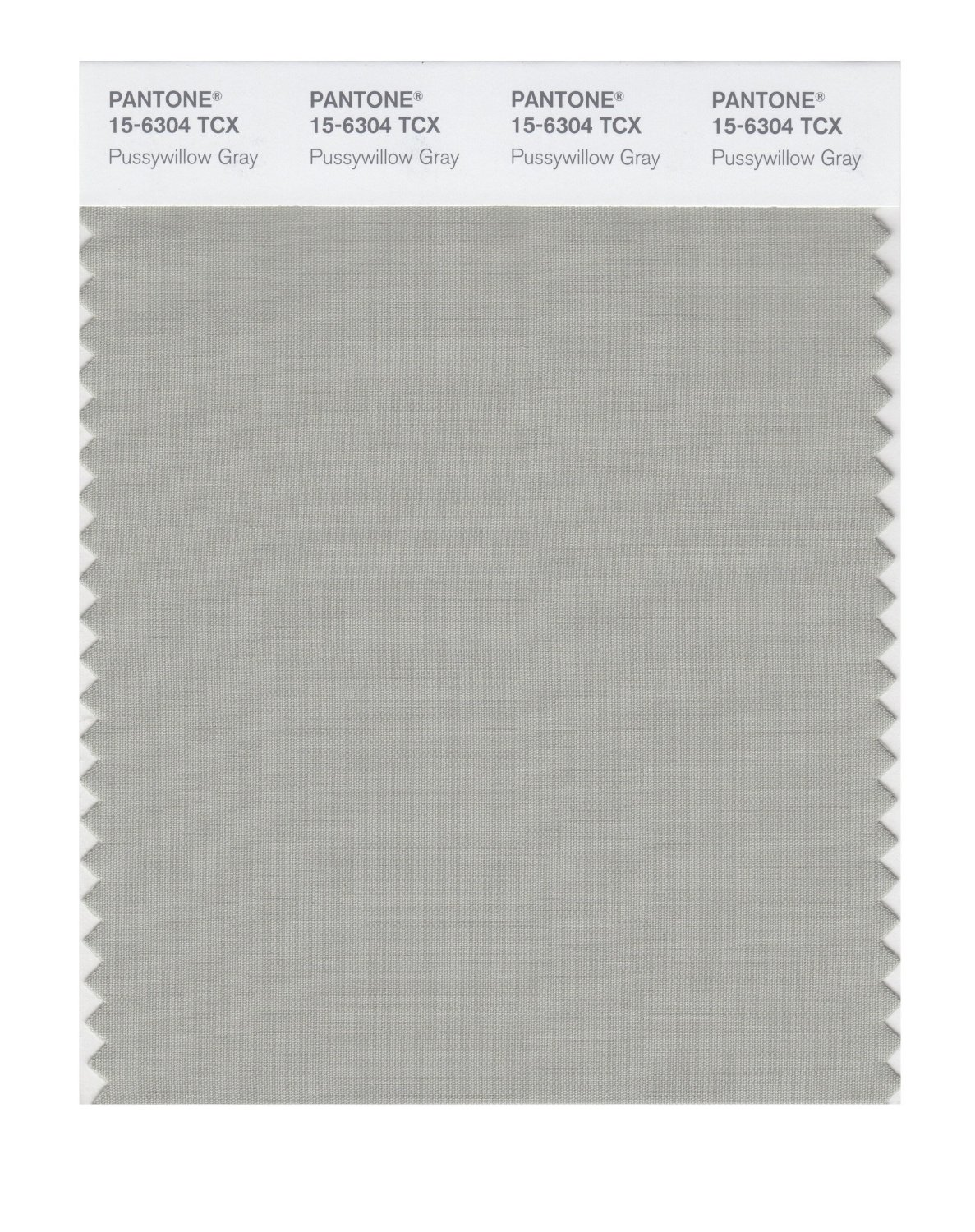 Pantone Smart Swatch 15-6304 Pussywillow Gray