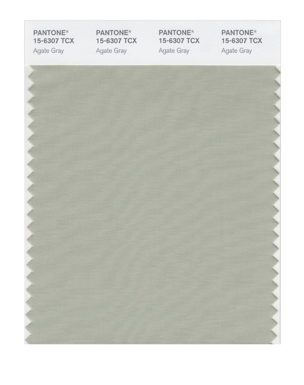 Pantone Smart Swatch 15-6307 Agate Gray