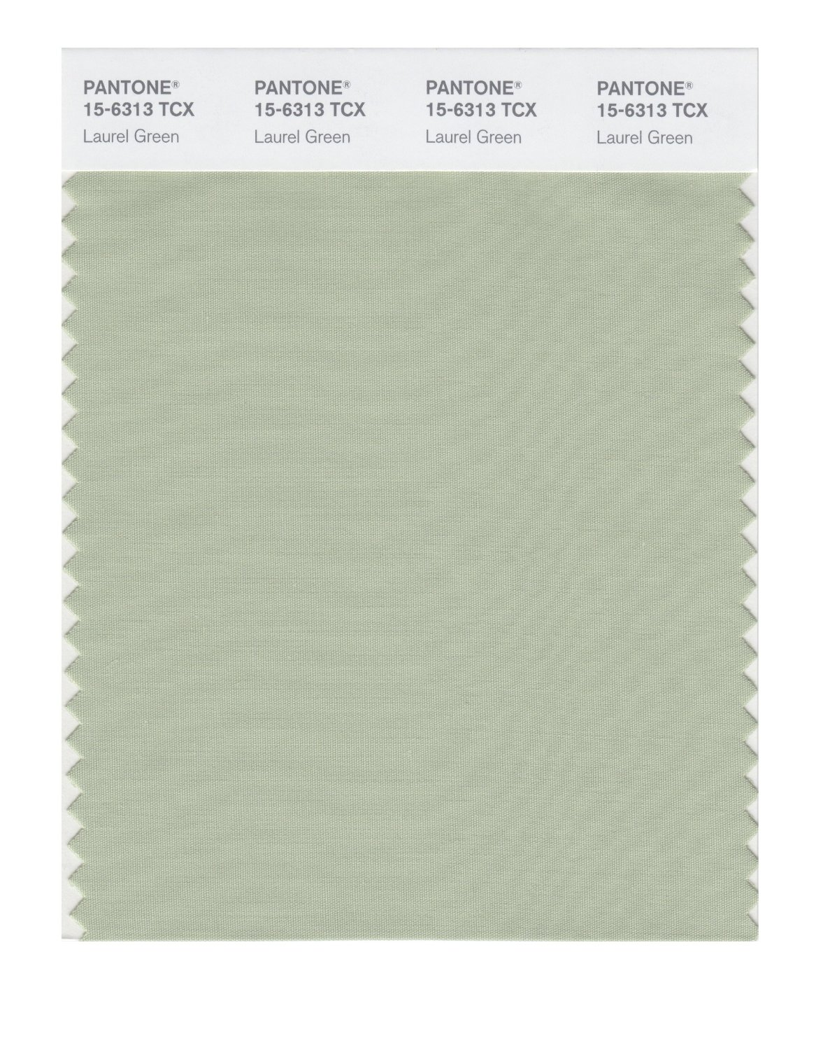 Pantone Smart Swatch 15-6313 Laurel Green
