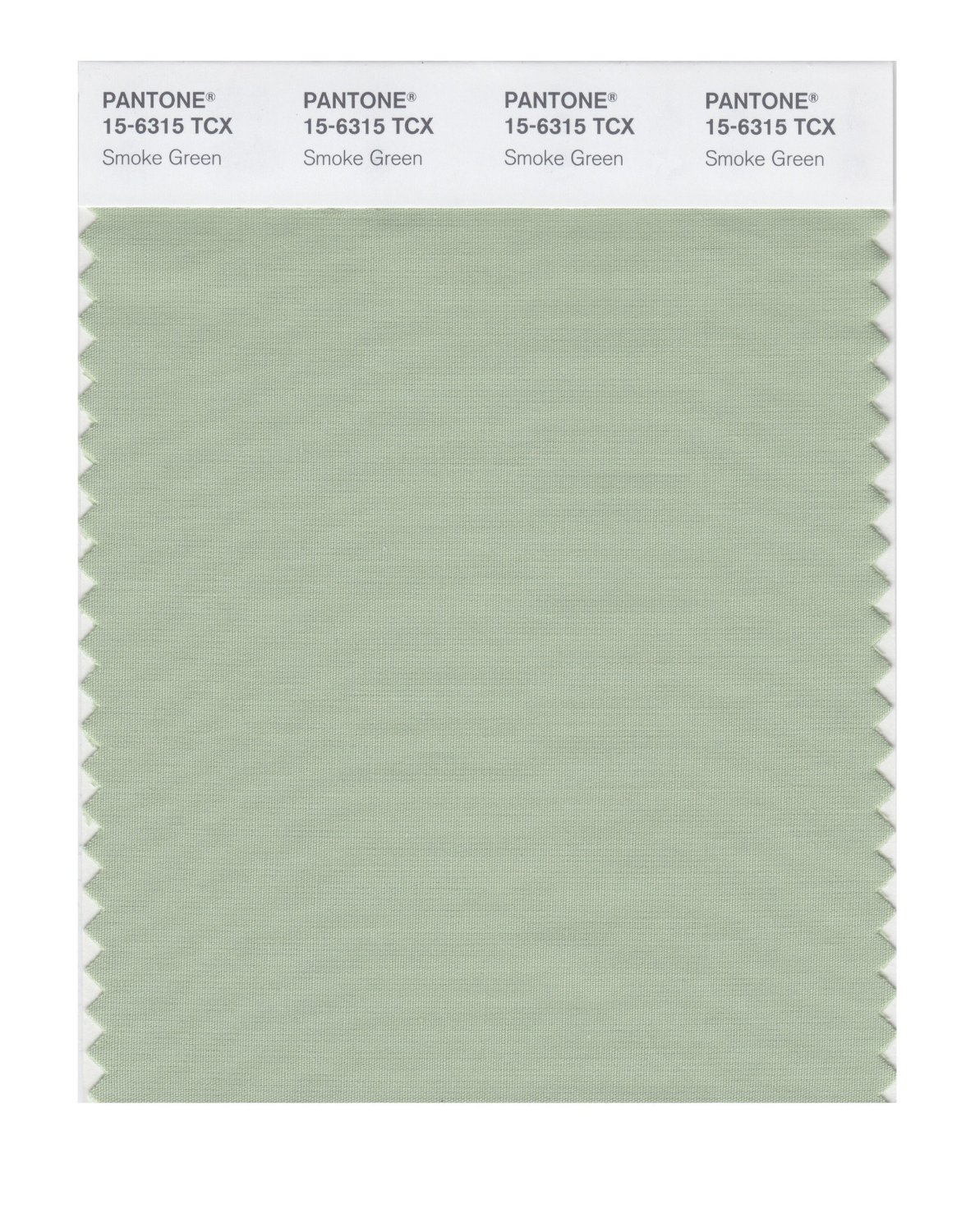 Pantone Smart Swatch 15-6315 Smoke Green