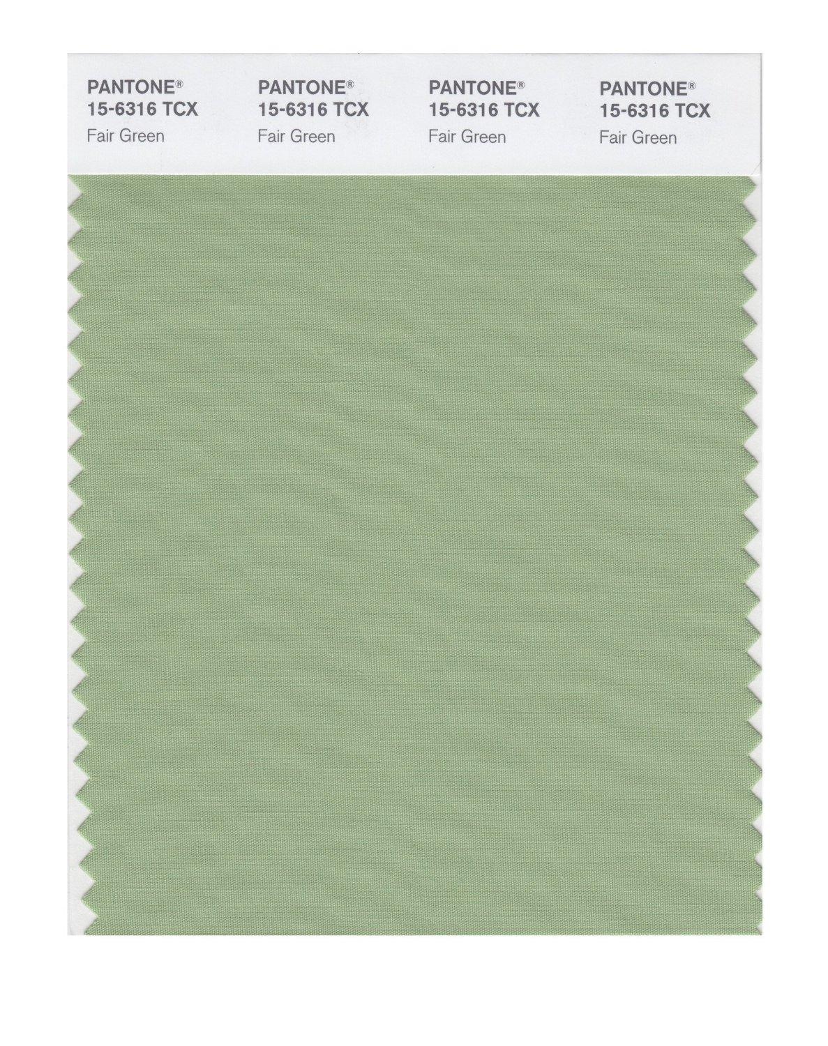 Pantone Smart Swatch 15-6316 Fair Green