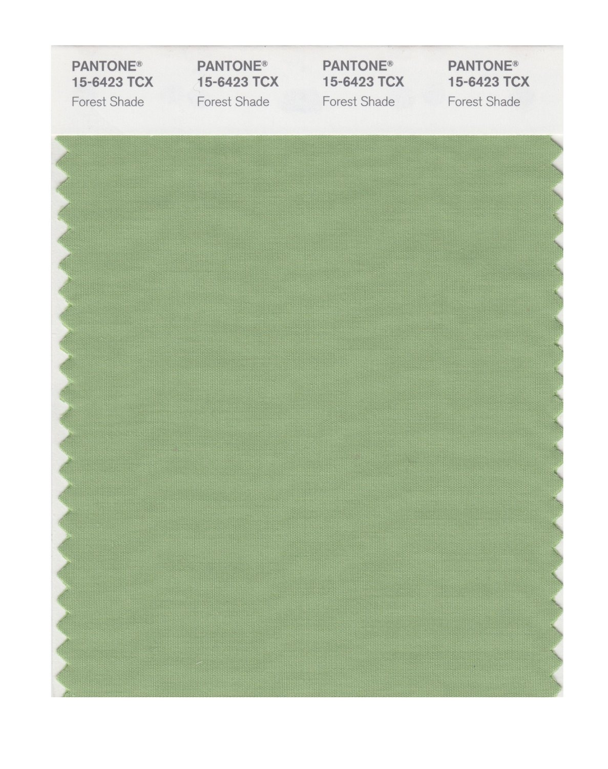 Pantone Smart Swatch 15-6423 Forest Shade