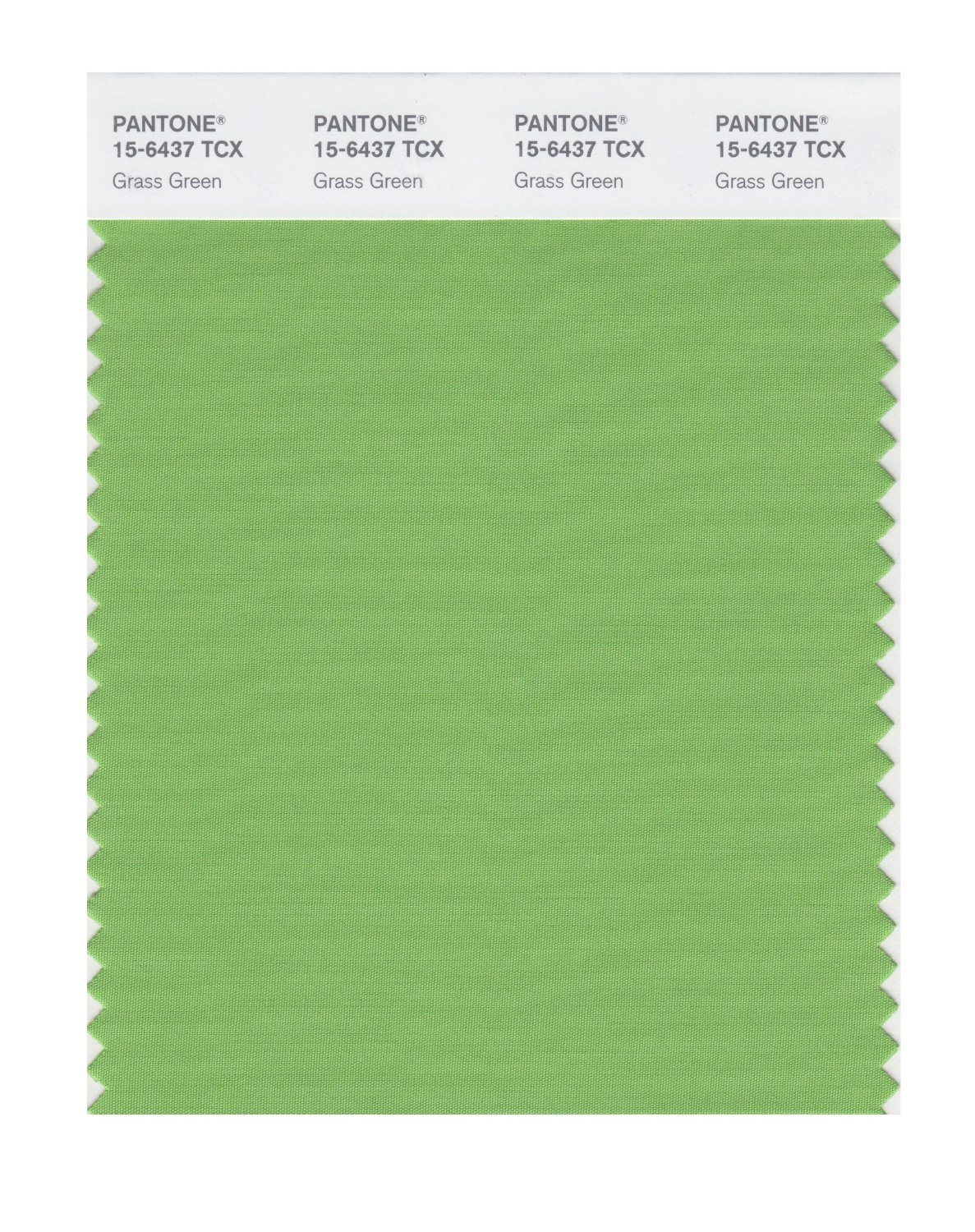 Pantone Smart Swatch 15-6437 Grass Green