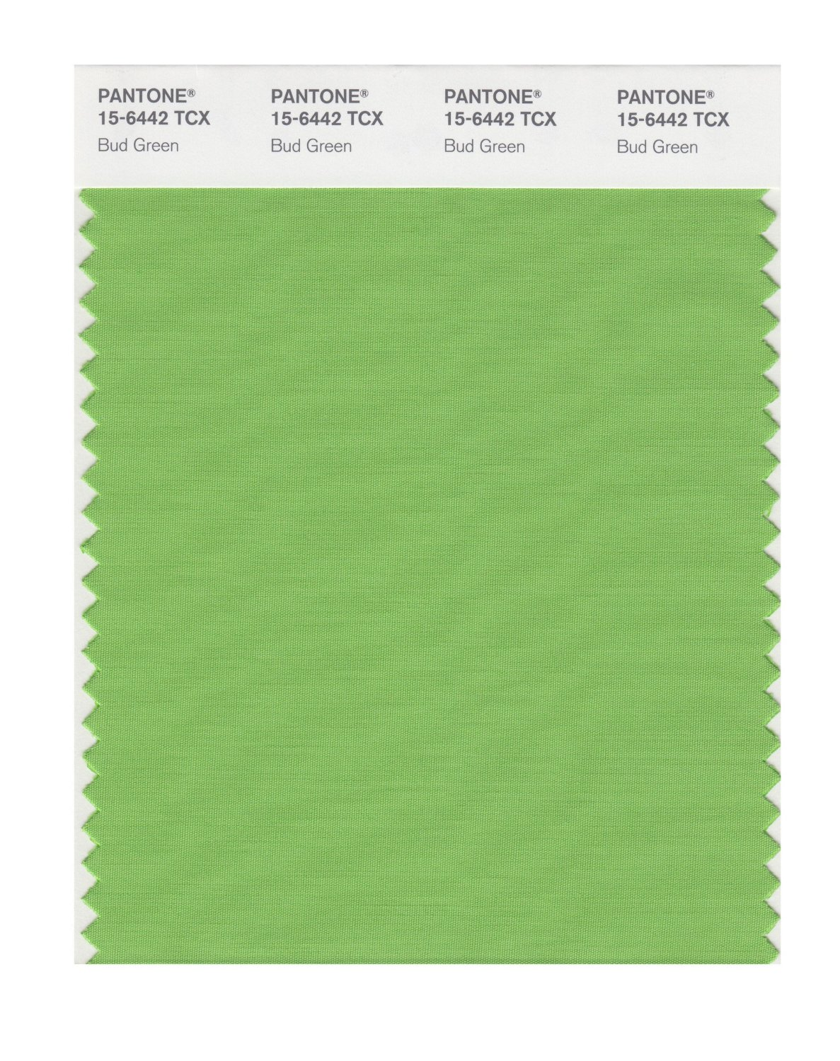 Pantone Smart Swatch 15-6442 Bud Green