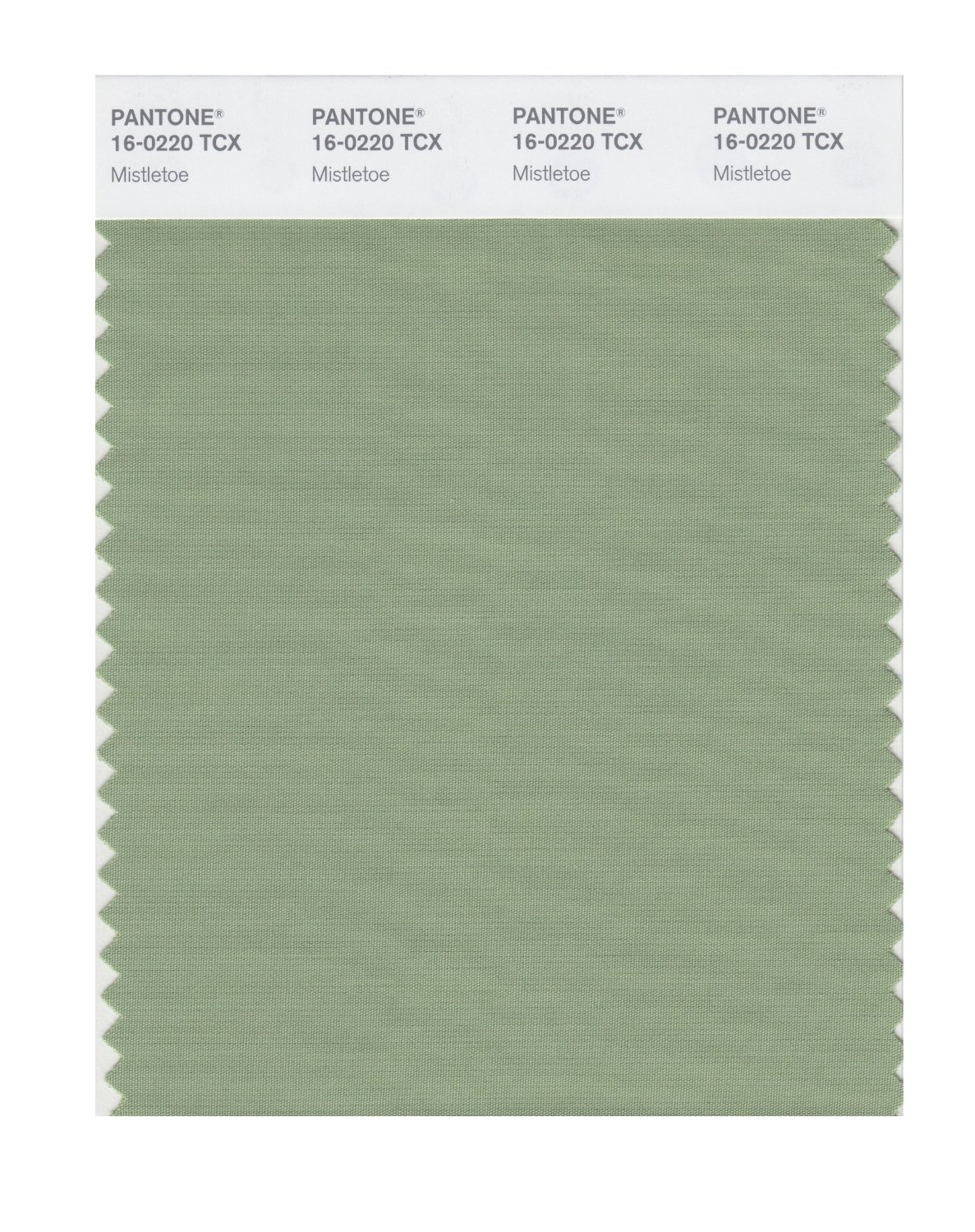 Pantone Smart Swatch 16-0220 Mistletoe