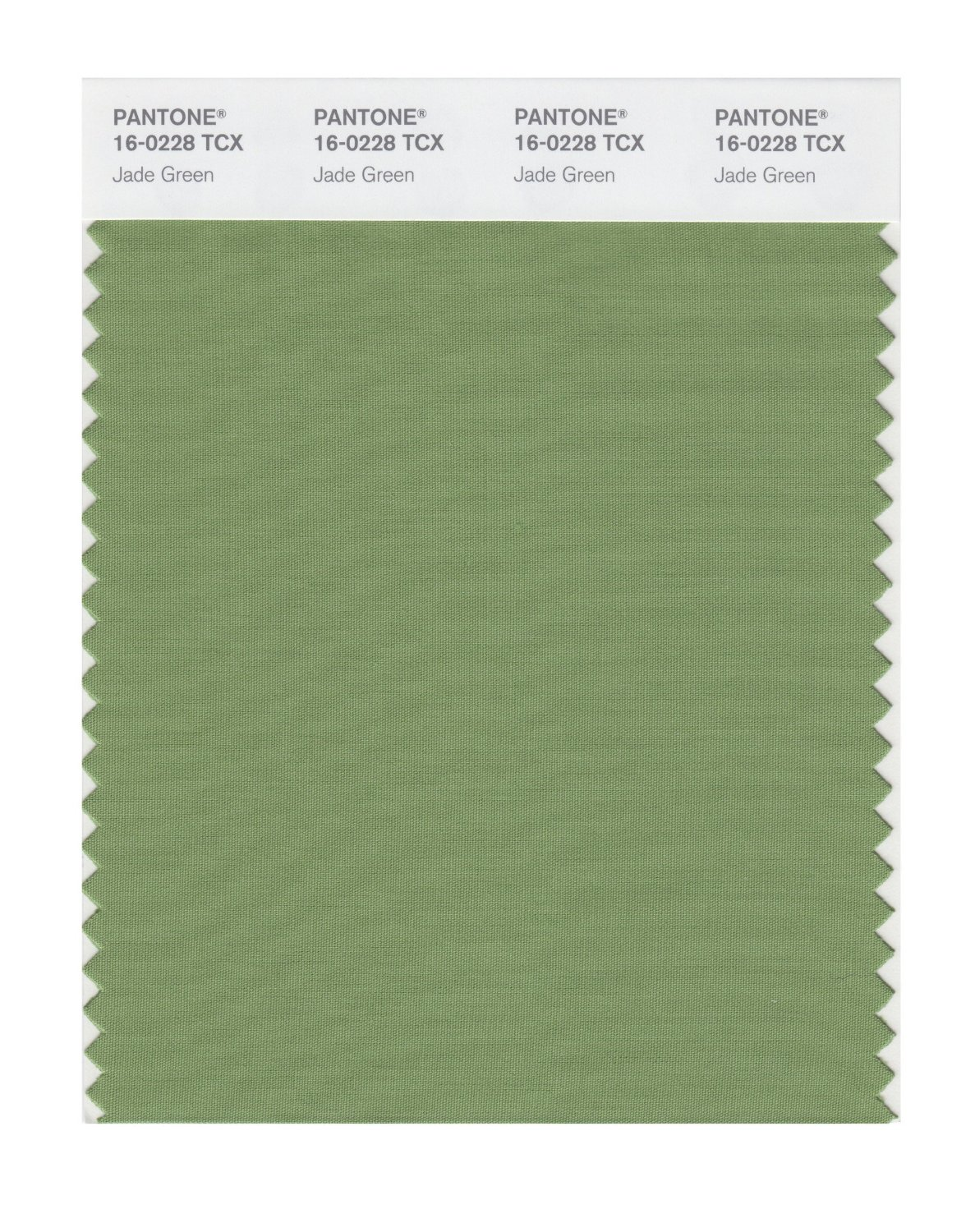 Pantone Smart Swatch 16-0228 Jade Green