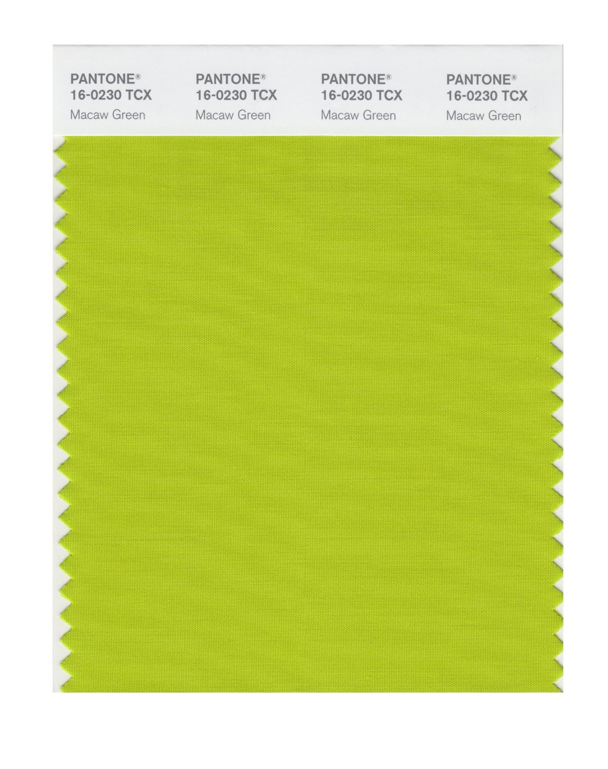Pantone Smart Swatch 16-0230 Macaw Green