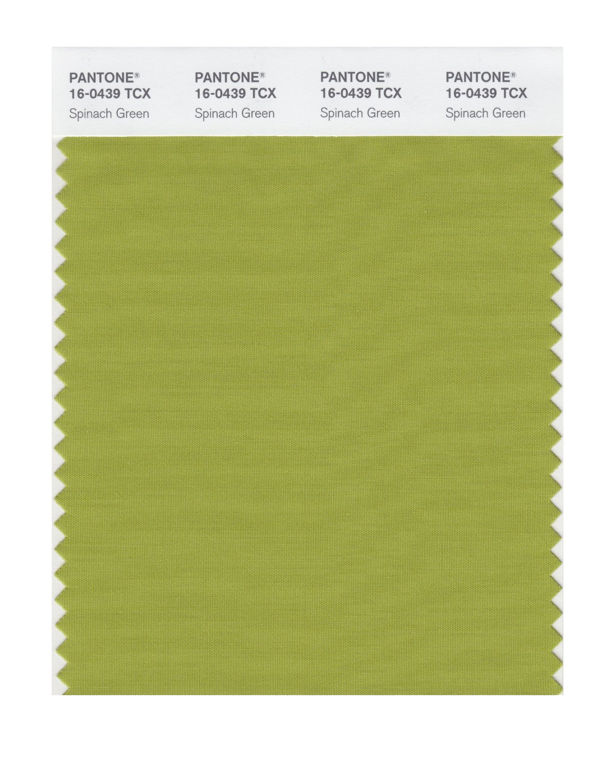 Pantone Smart Swatch 16-0439 Spinach Green