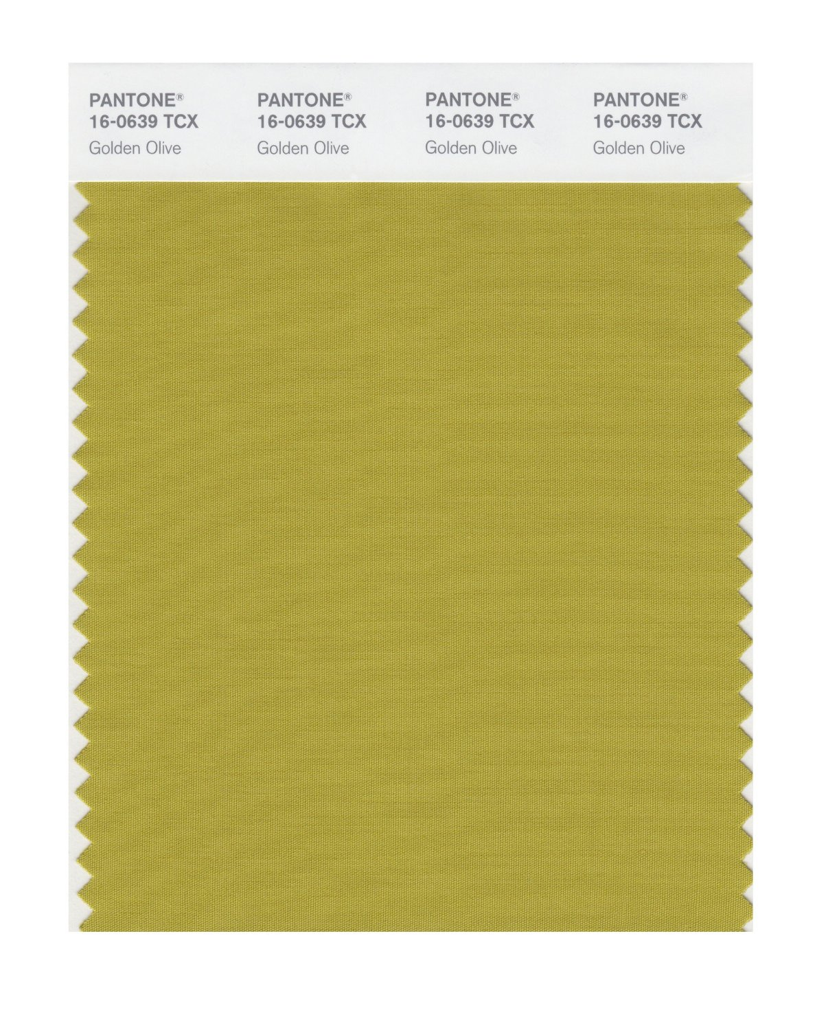 Pantone Smart Swatch 16-0639 Golden Olive