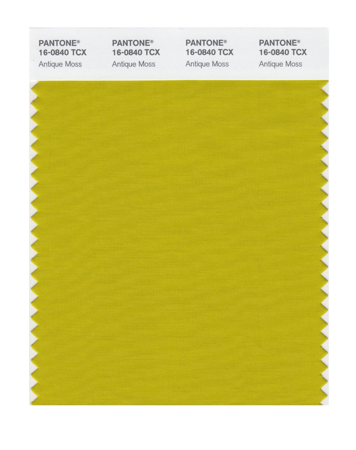 Pantone Smart Swatch 16-0840 Antique Moss