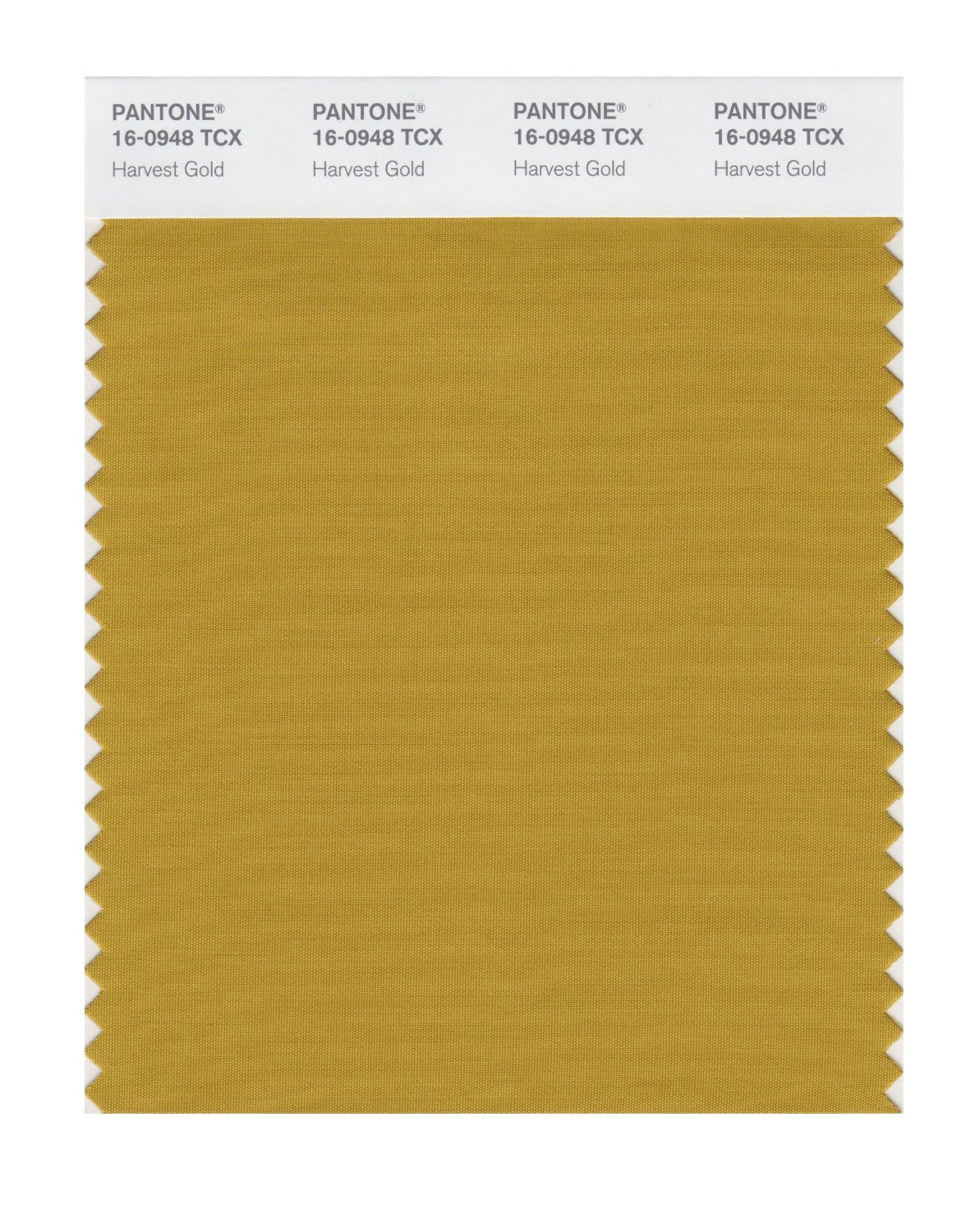 Pantone Smart Swatch 16-0948 Harvest Gold