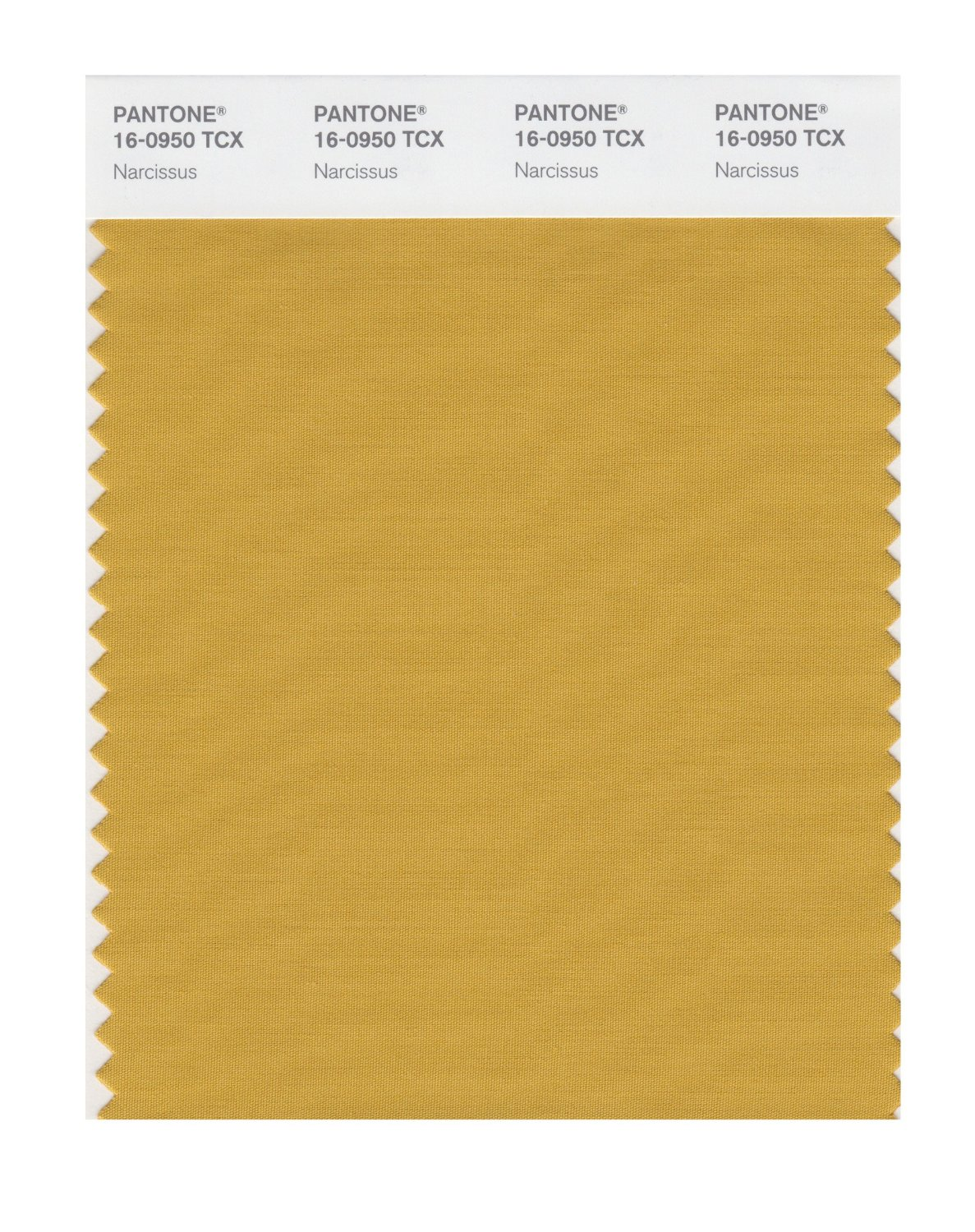 Pantone Smart Swatch 16-0950 Narcissus