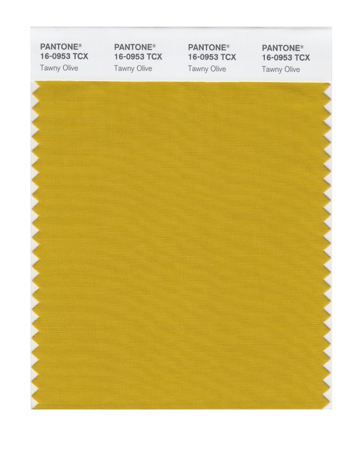 Pantone Smart Swatch 16-0953 Tawny Olive