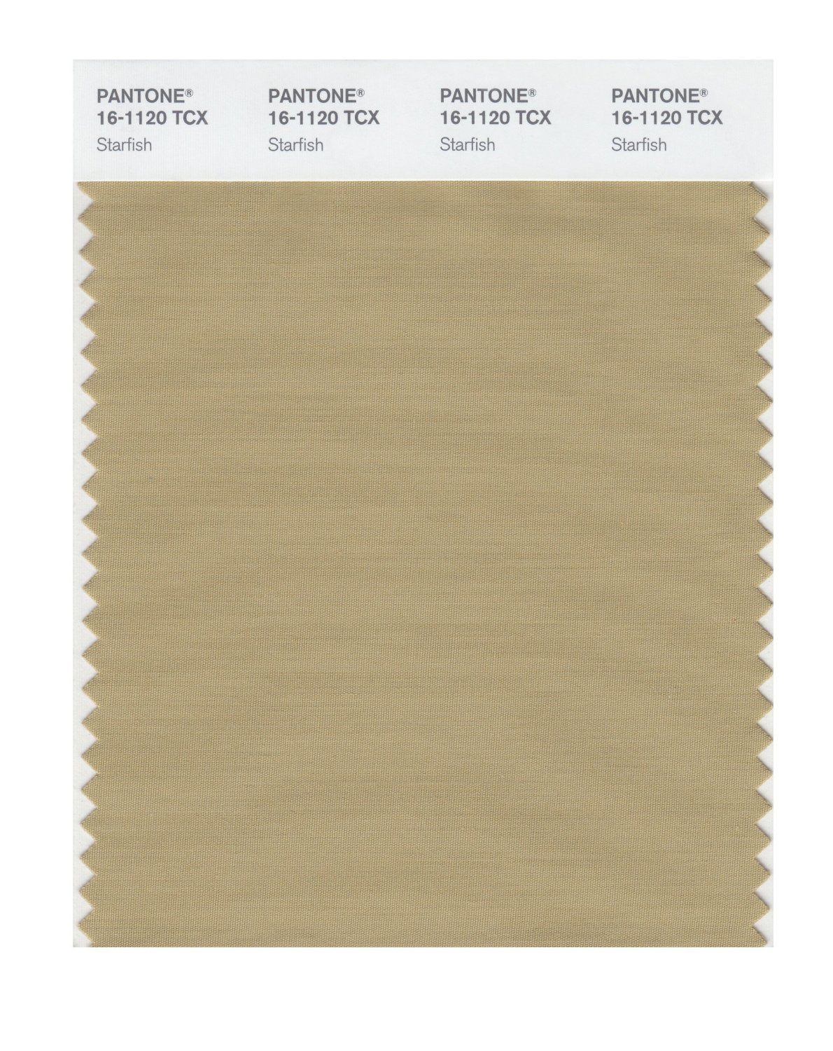 Pantone Smart Swatch 16-1120 Starfish