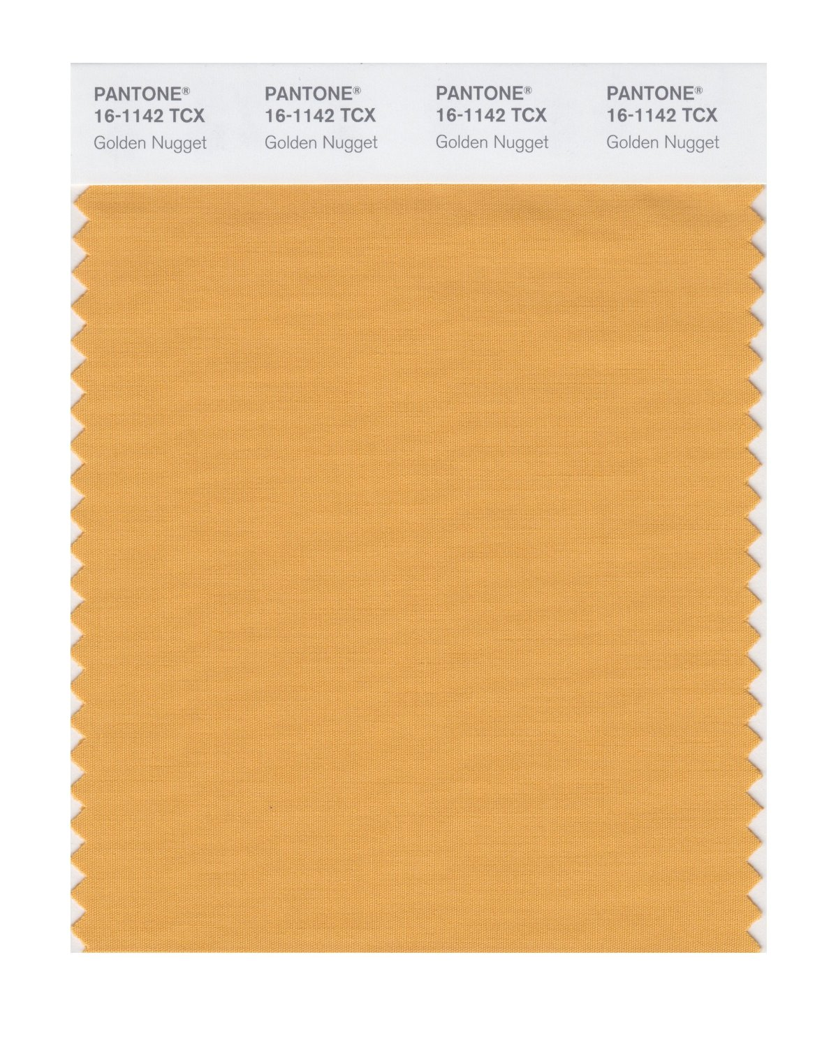 Pantone Smart Swatch 16-1142 Golden Nugget