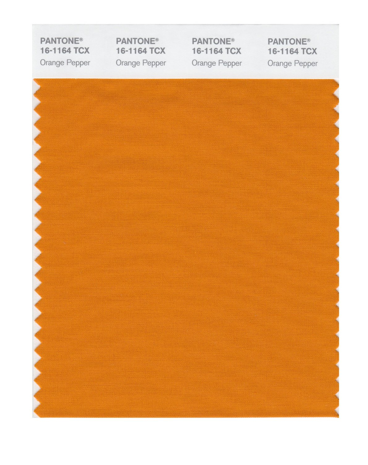 Pantone Smart Swatch 16-1164 Orange Pepper