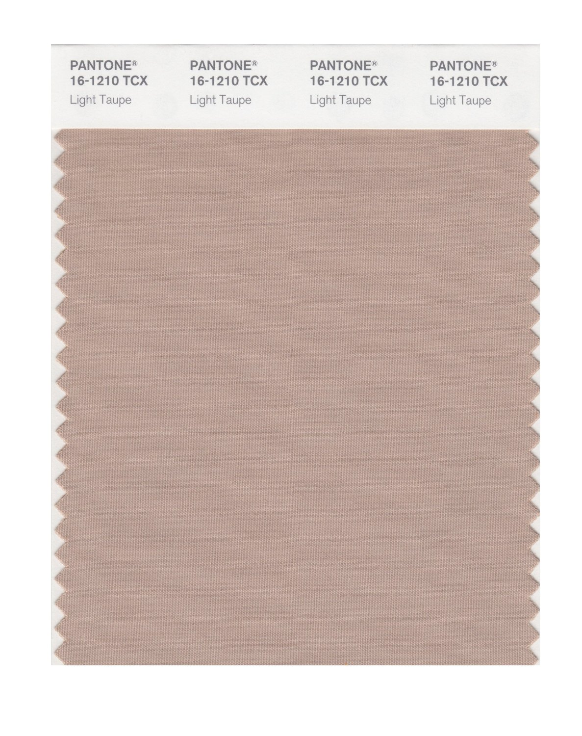 Pantone Smart Swatch 16-1210 Light Taupe