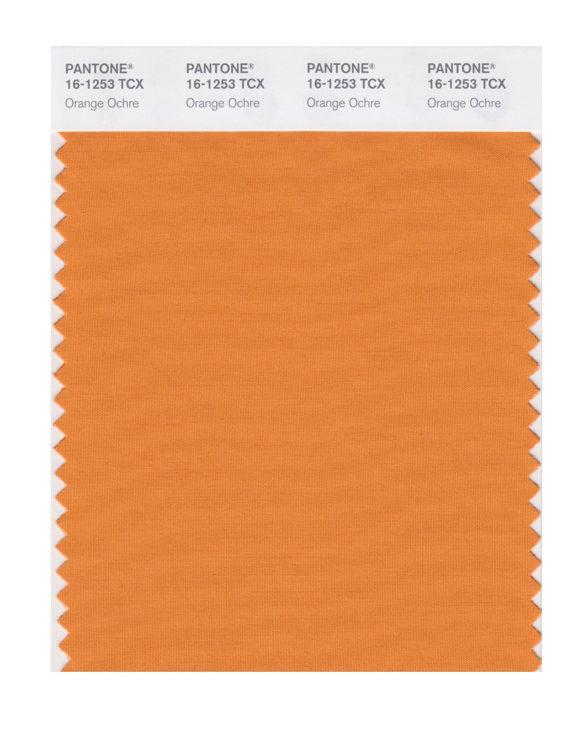 Pantone Smart Swatch 16-1253 Orange Ochre