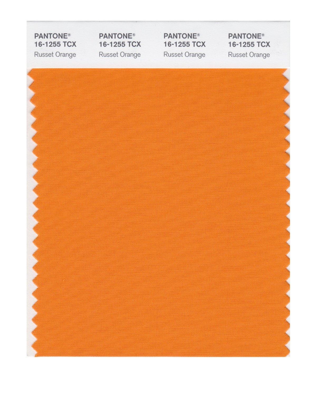 Buy pantone smart swatch 16 1255 russett orange for Where to buy pantone paint