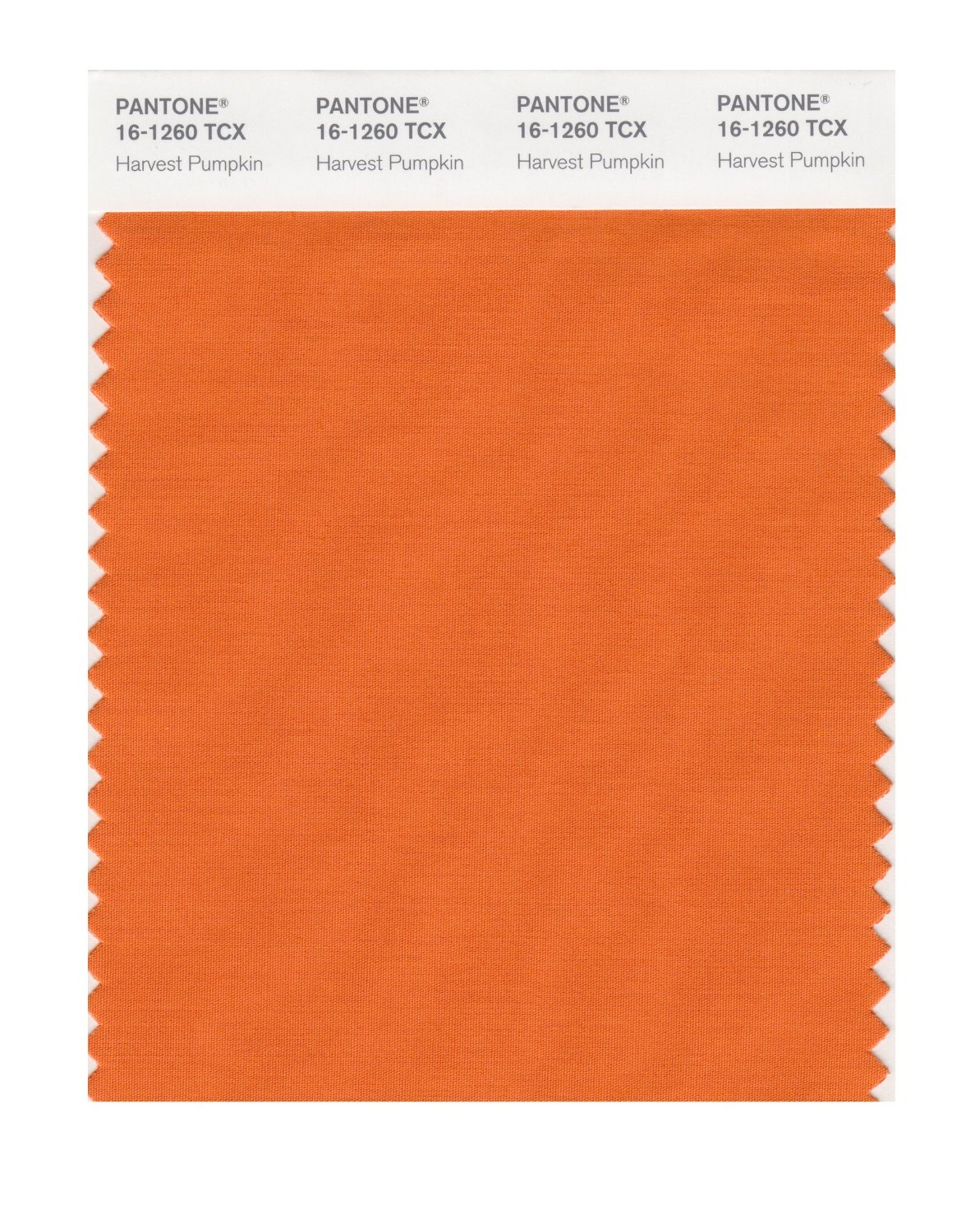 Pantone Smart Swatch 16-1260 Harvest Pumpkin