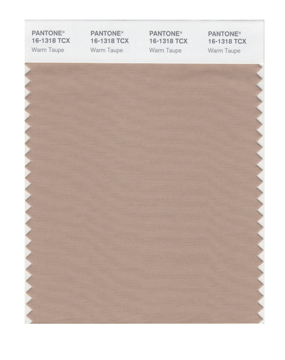 Pantone Smart Swatch 16-1318 Warm Taupe