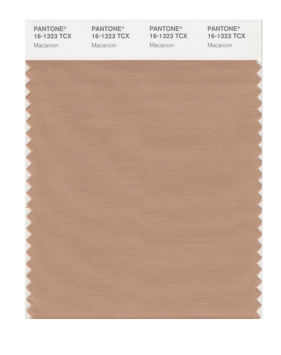 Pantone Smart Swatch 16-1323 Macaroon