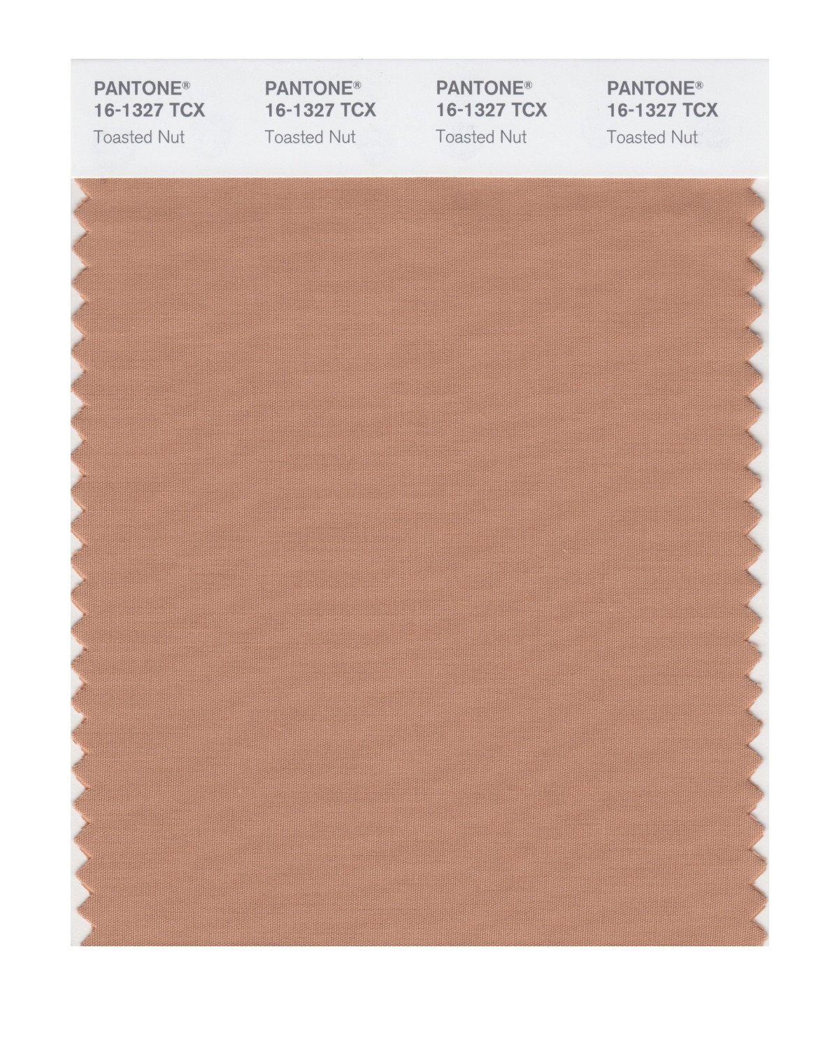 Pantone Smart Swatch 16-1327 Toasted Nut
