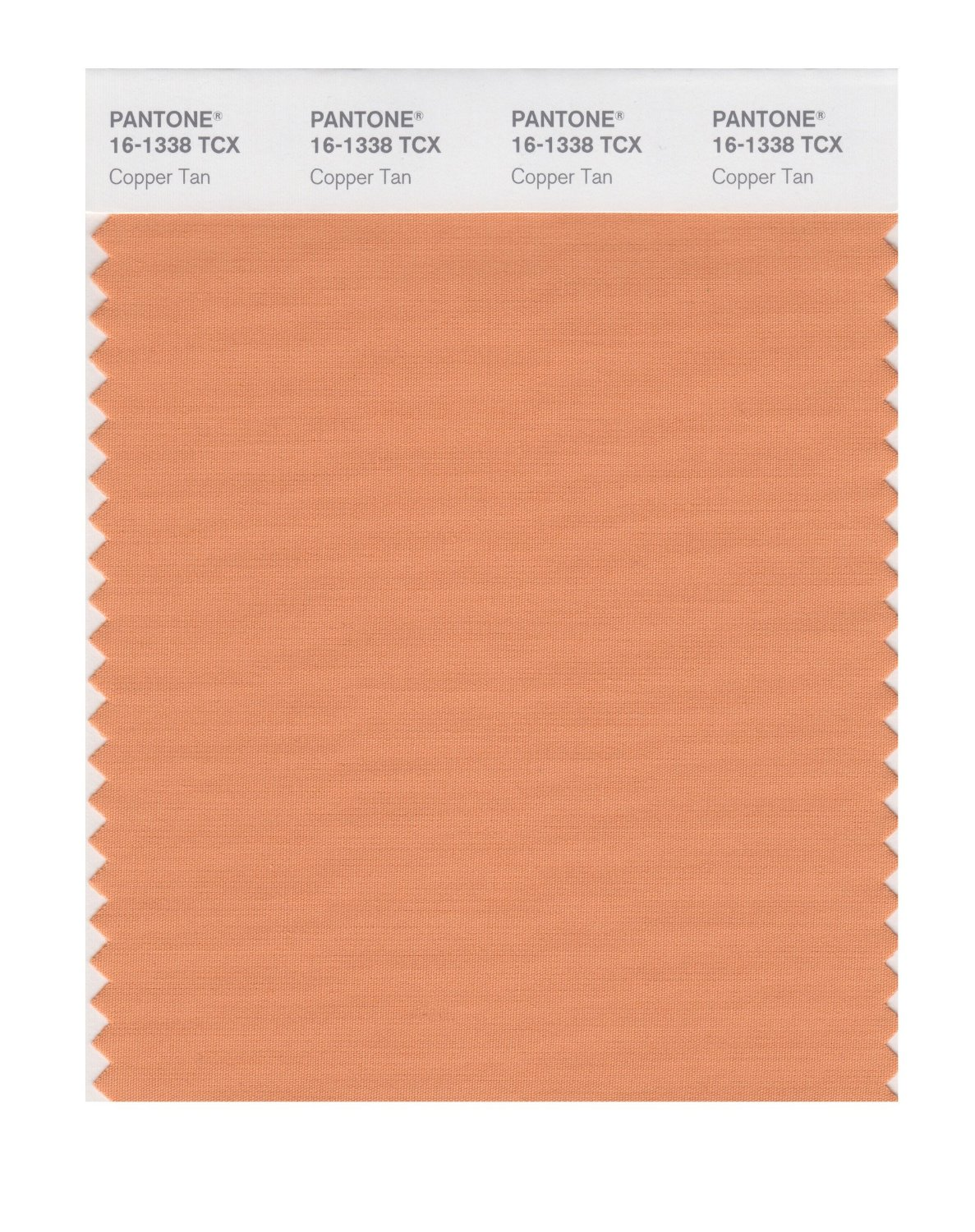 Pantone Smart Swatch 16-1338 Copper Tan
