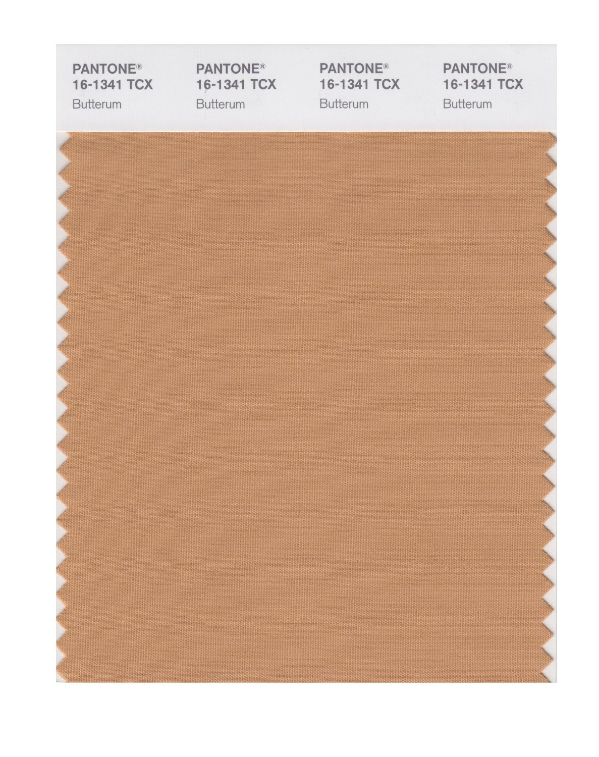 Pantone Smart Swatch 16-1341 Butterum