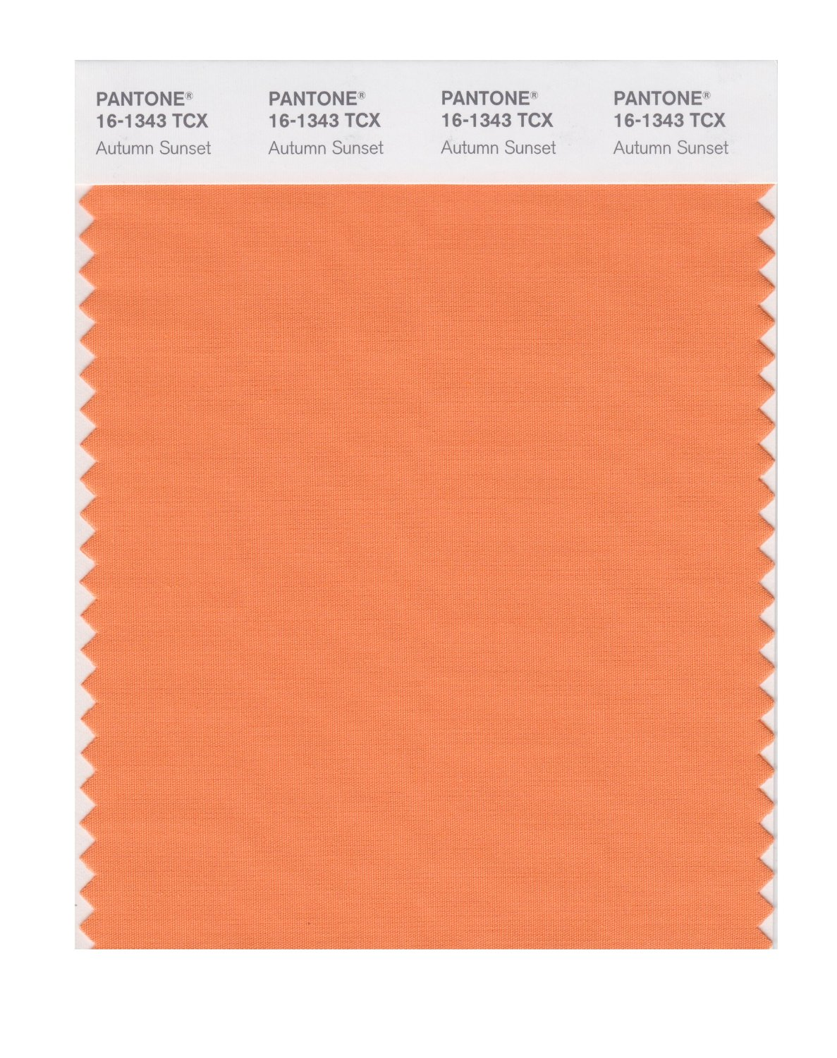 Pantone Smart Swatch 16-1343 Autumn Sunset