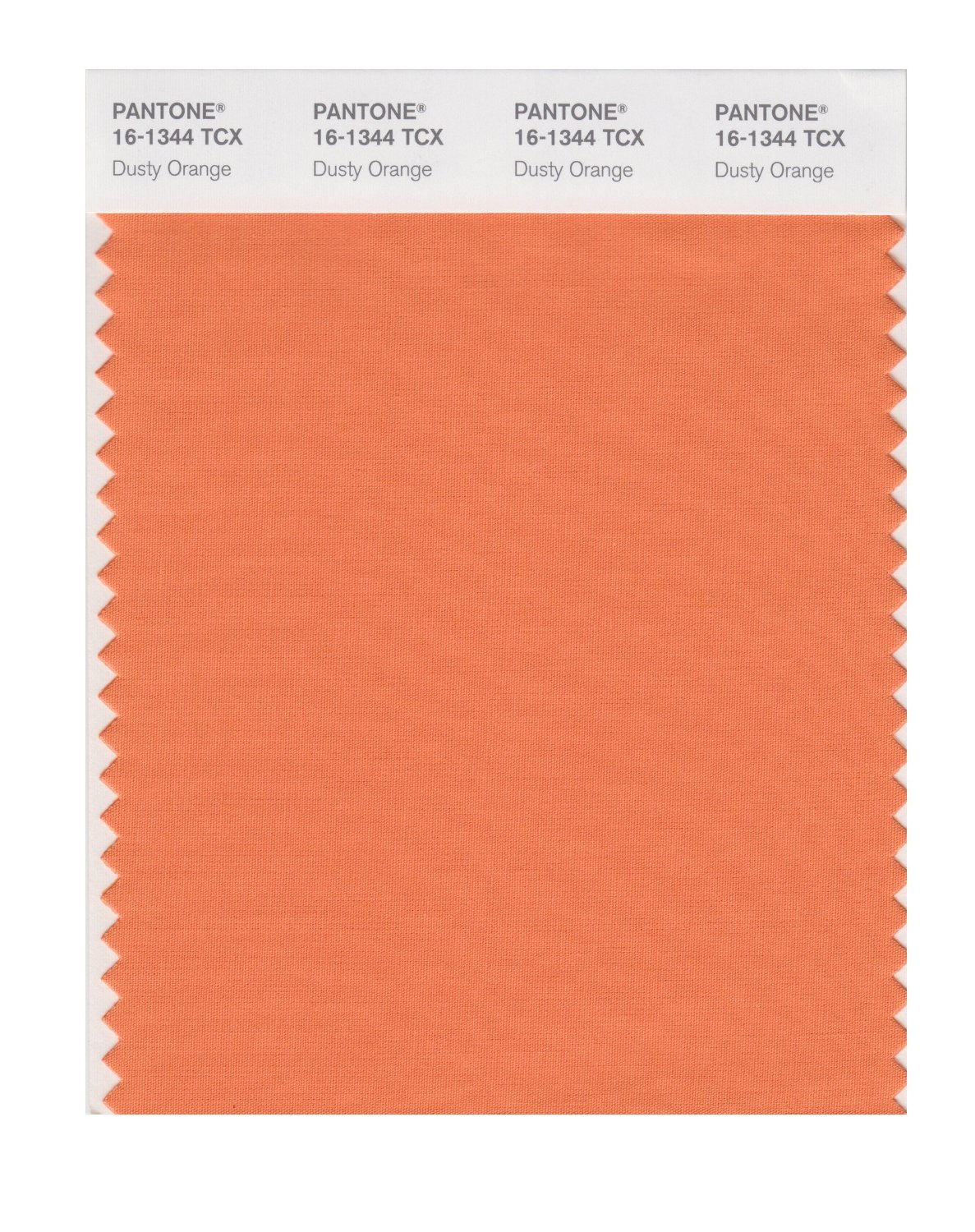 Pantone Smart Swatch 16-1344 Dusty Orange