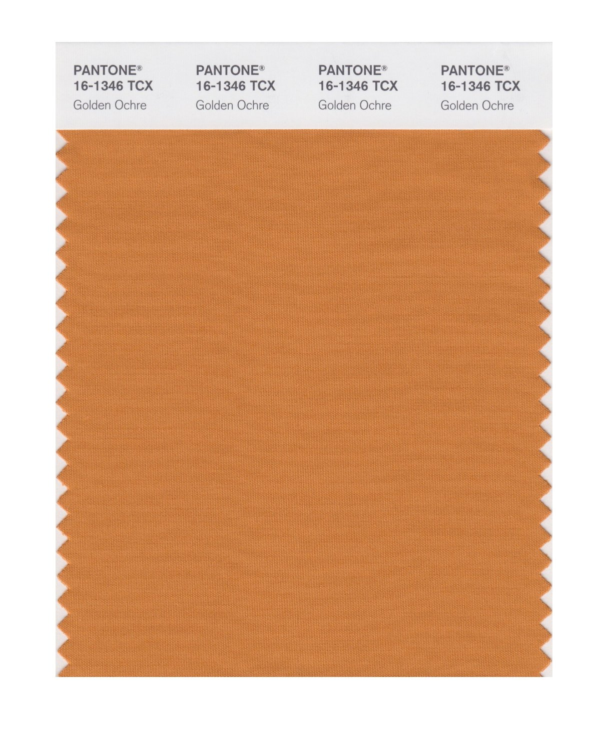 Pantone Smart Swatch 16-1346 Golden Ochre