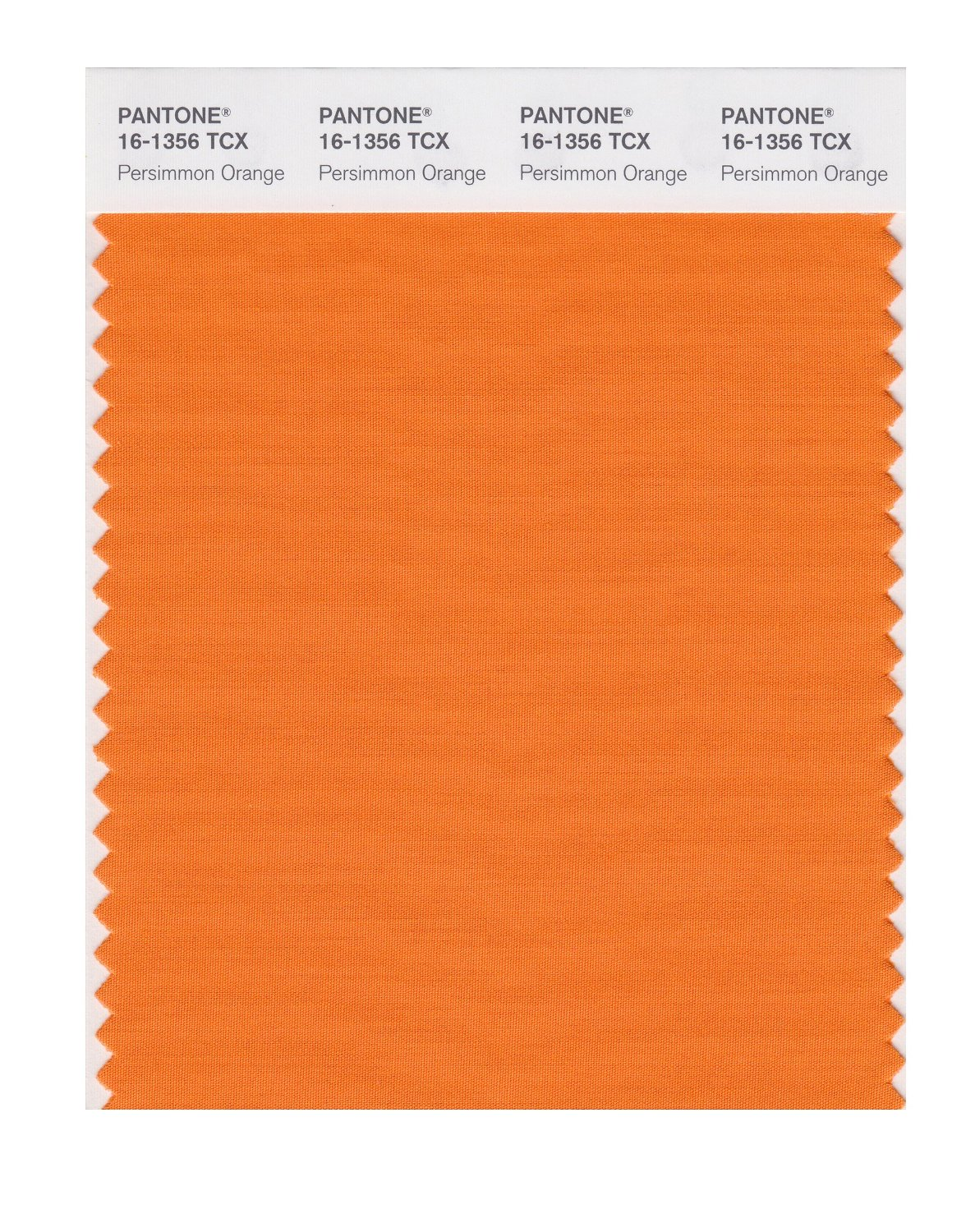 Pantone Smart Swatch 16-1356 Persimmon Orange