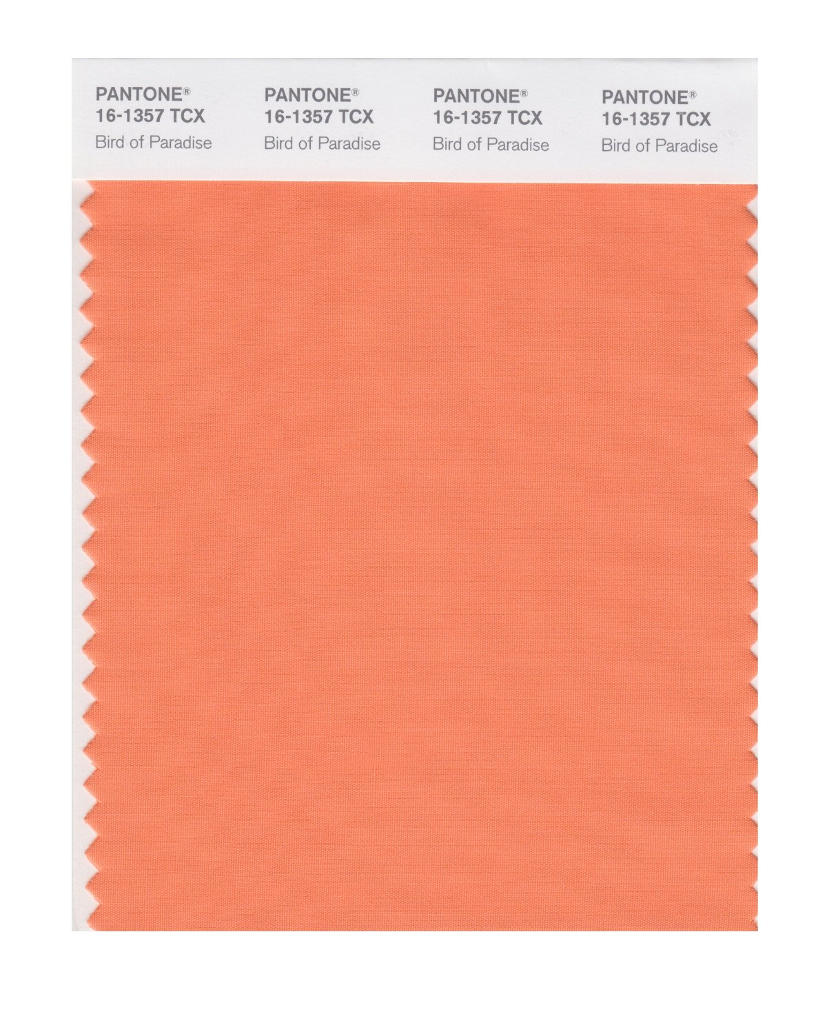 Pantone Smart Swatch 16-1357 Bird Of Paradise