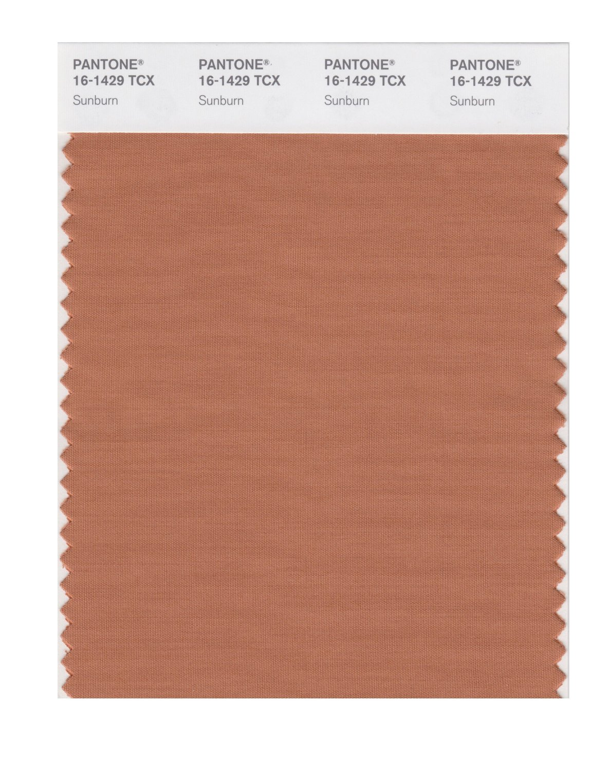 Pantone Smart Swatch 16-1429 Sunburn