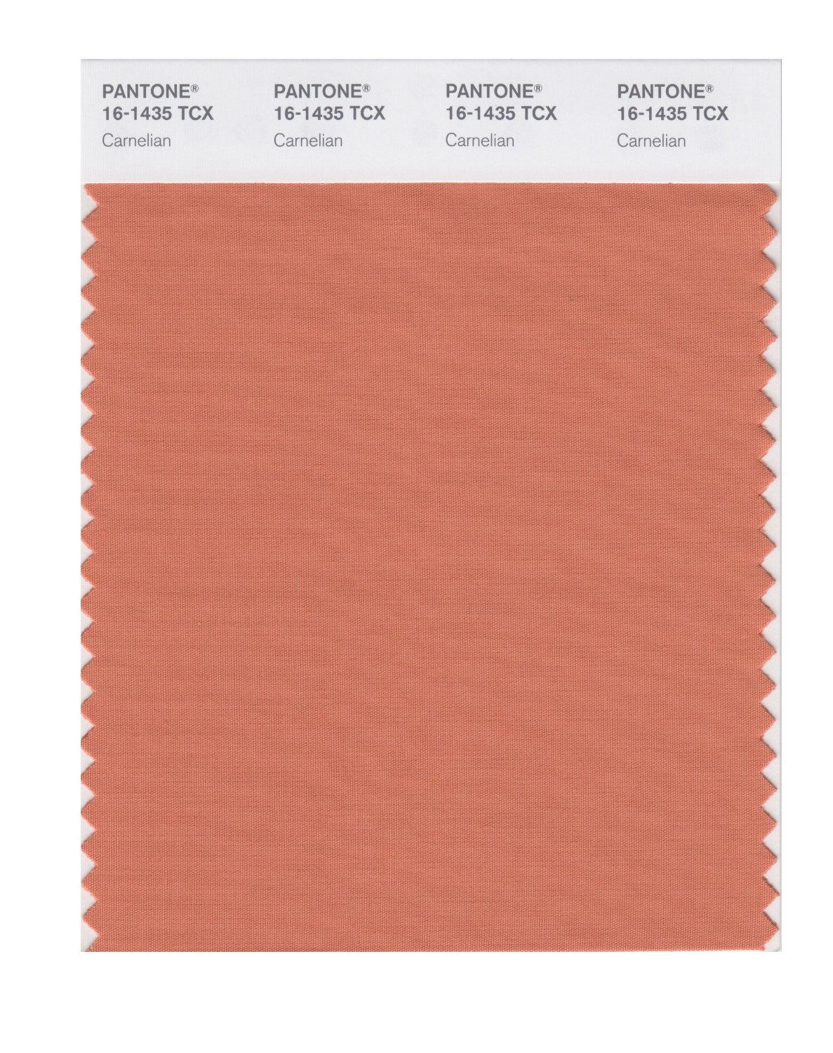 Buy pantone smart swatch 16 1435 carnelian for Where to buy pantone paint
